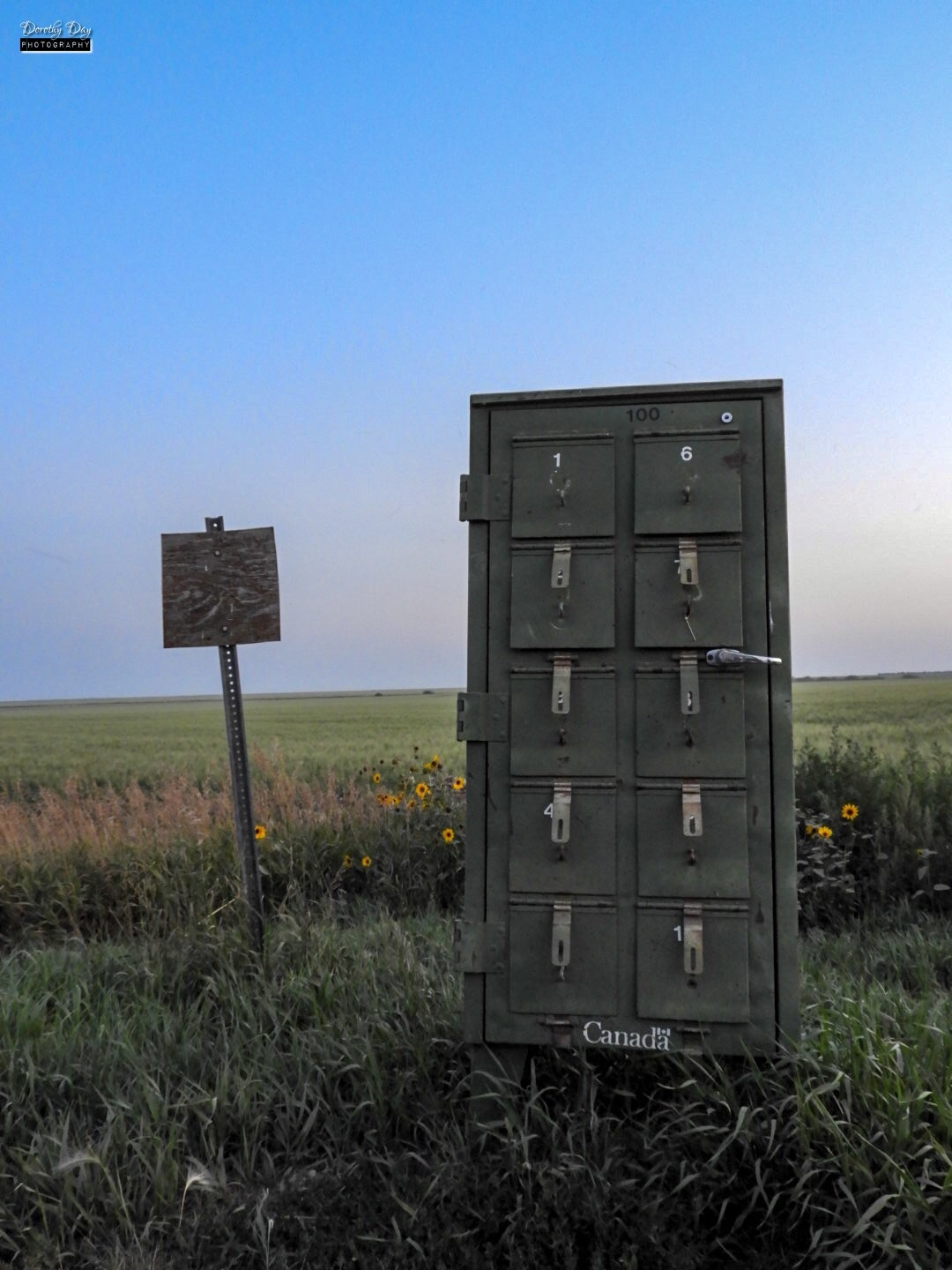 Rural Mailbox by Dorothy D