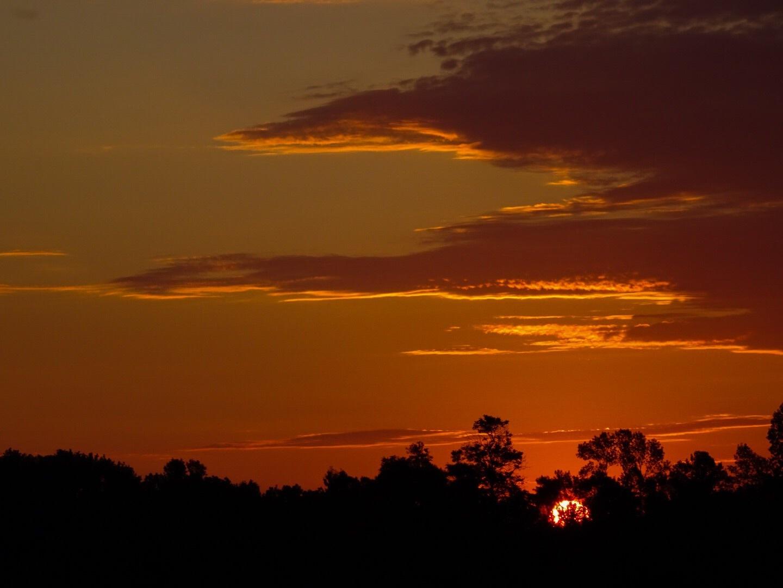 Sunrise by Dorothy D