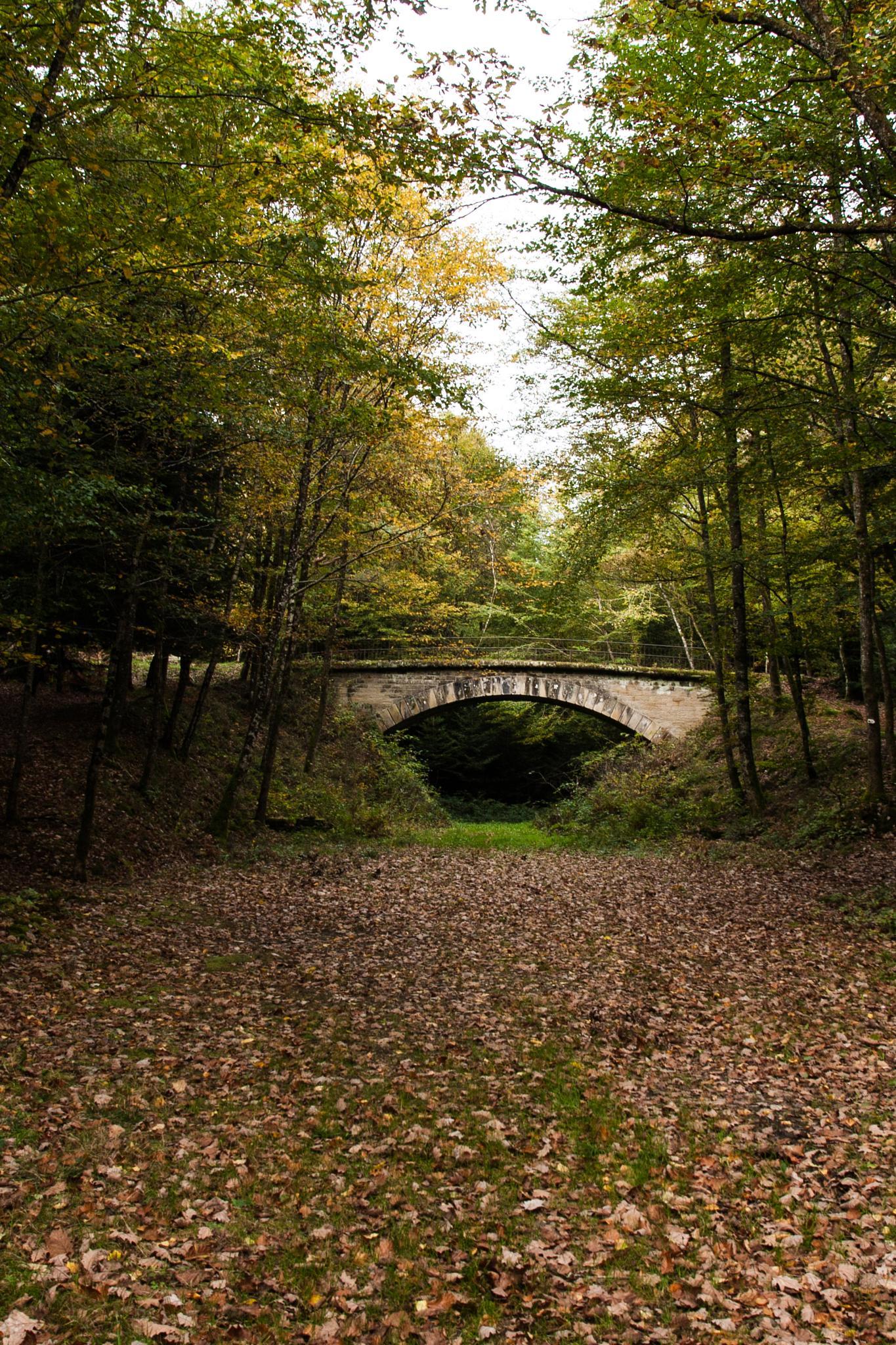 Lost Bridge I by Axel La
