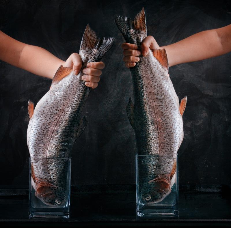 Big fish by Nataly Golubeva