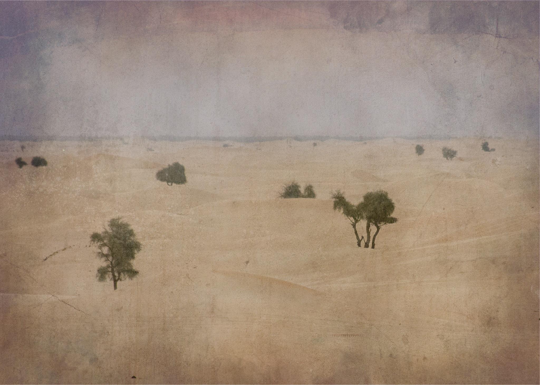 Digital Experiments III: Desert by kleptography