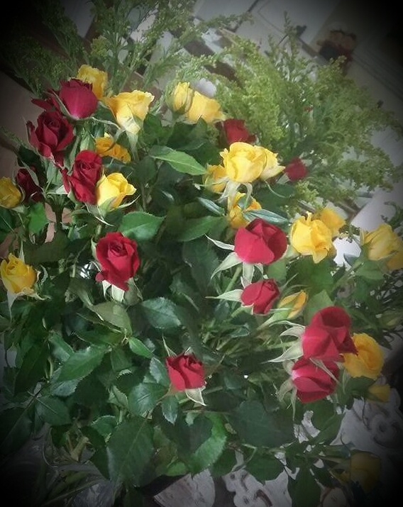 Roses  by Sonja
