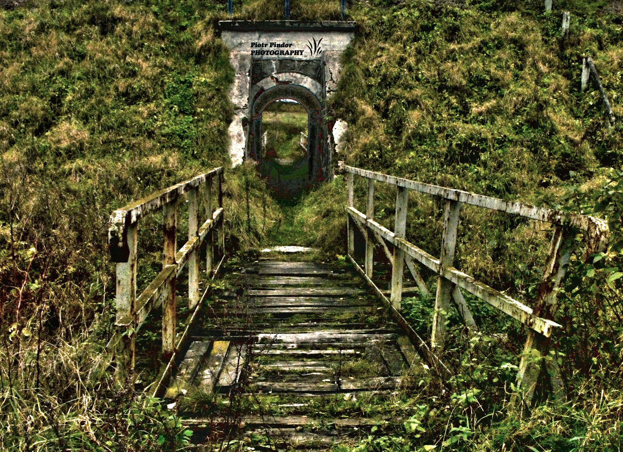 bridge by Piotr Pindor