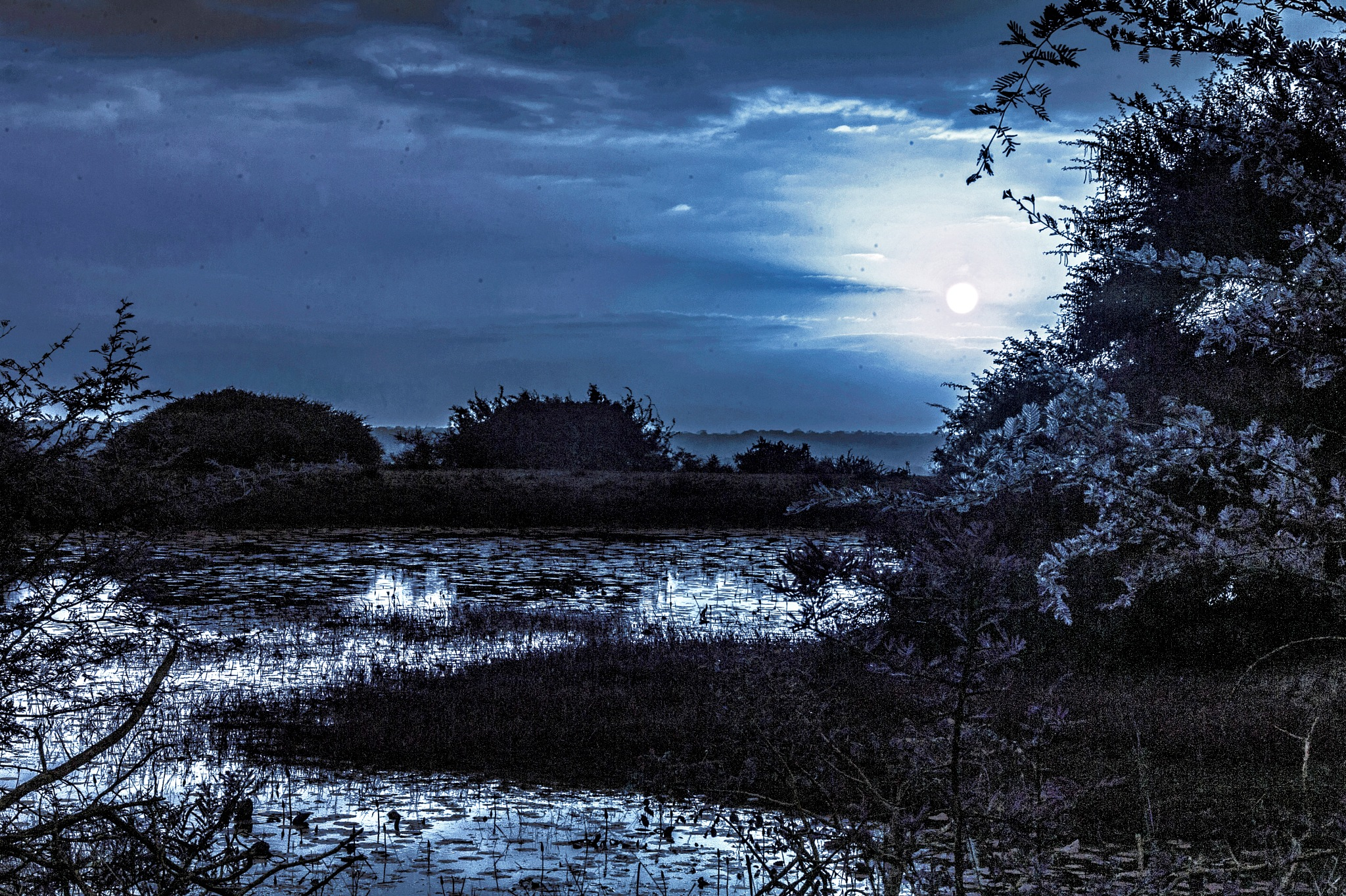 Moon Light Shadow  by PeterMChambers