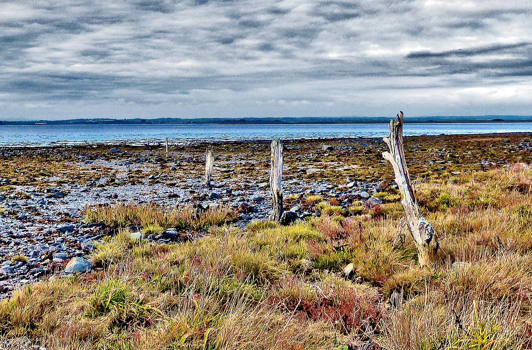 Shoreline Boundary   by PeterMChambers