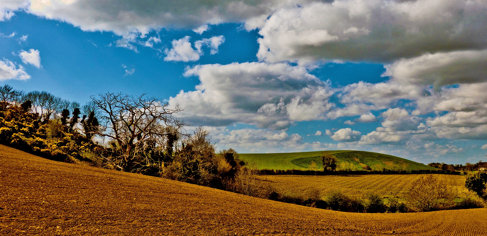 Co. Down Drumlins by PeterMChambers