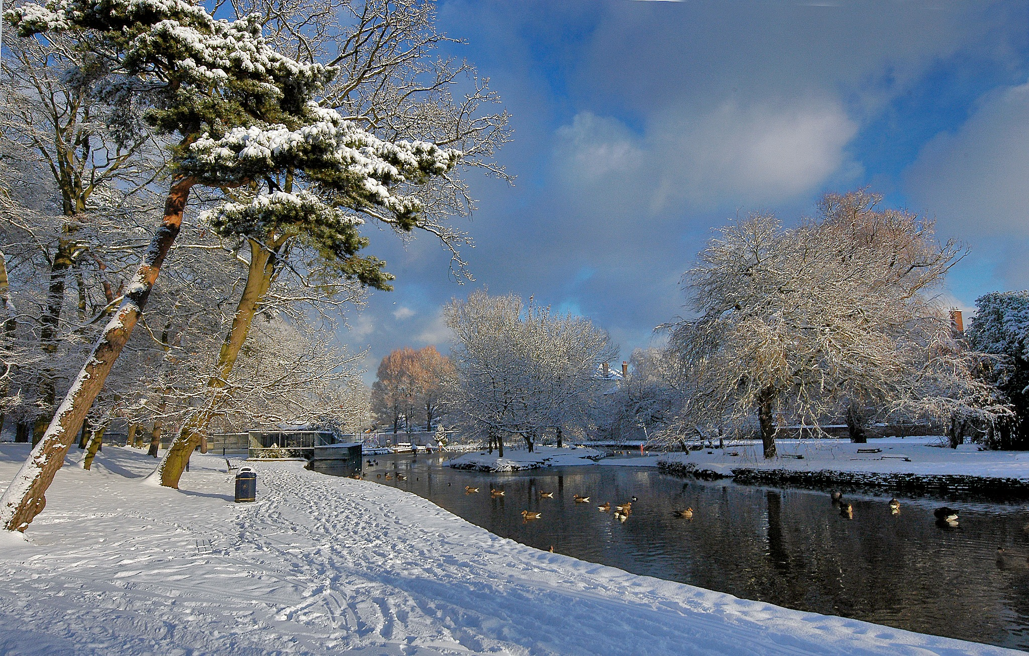 Winter Wonder by PeterMChambers
