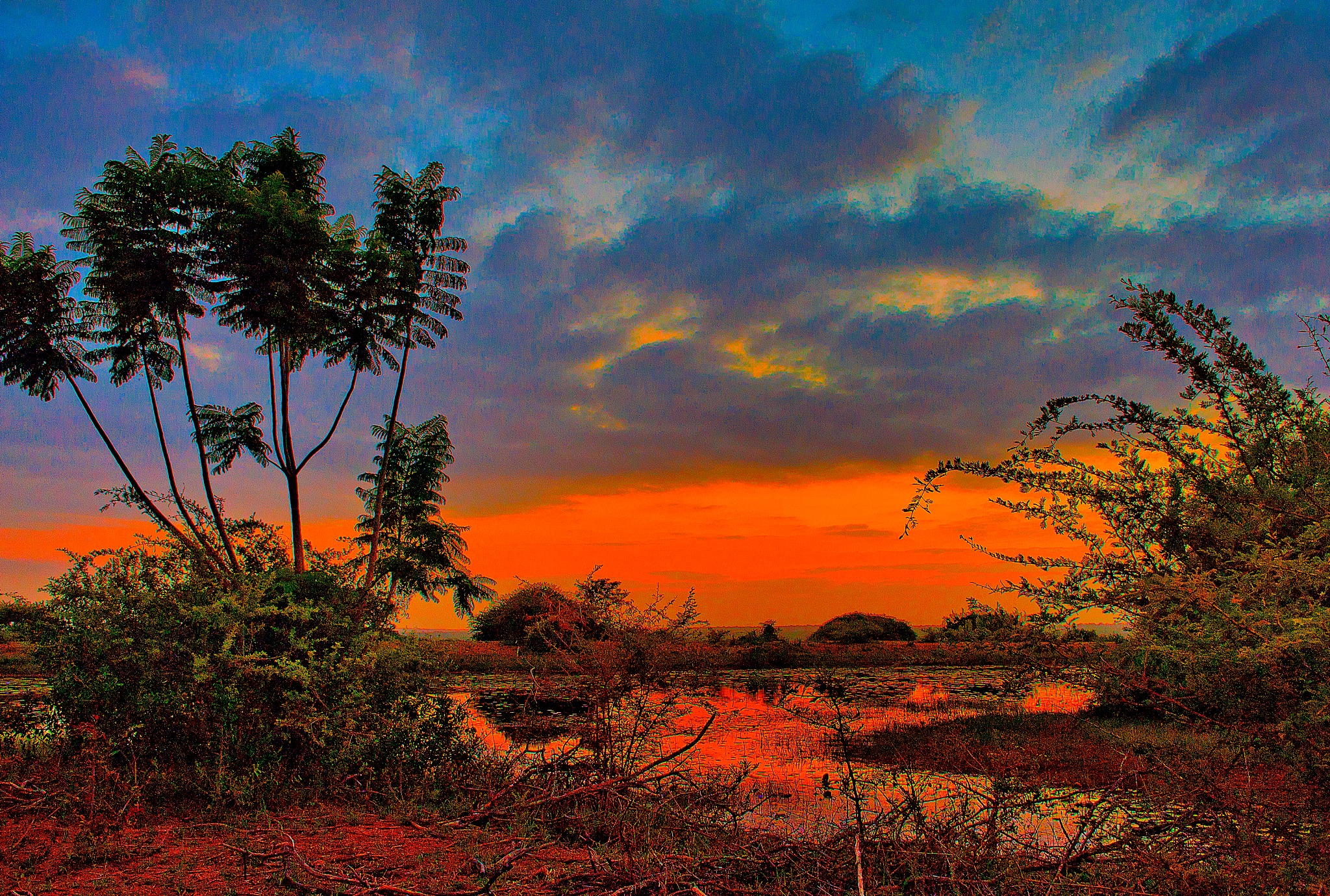 Sunrise Africa by PeterMChambers