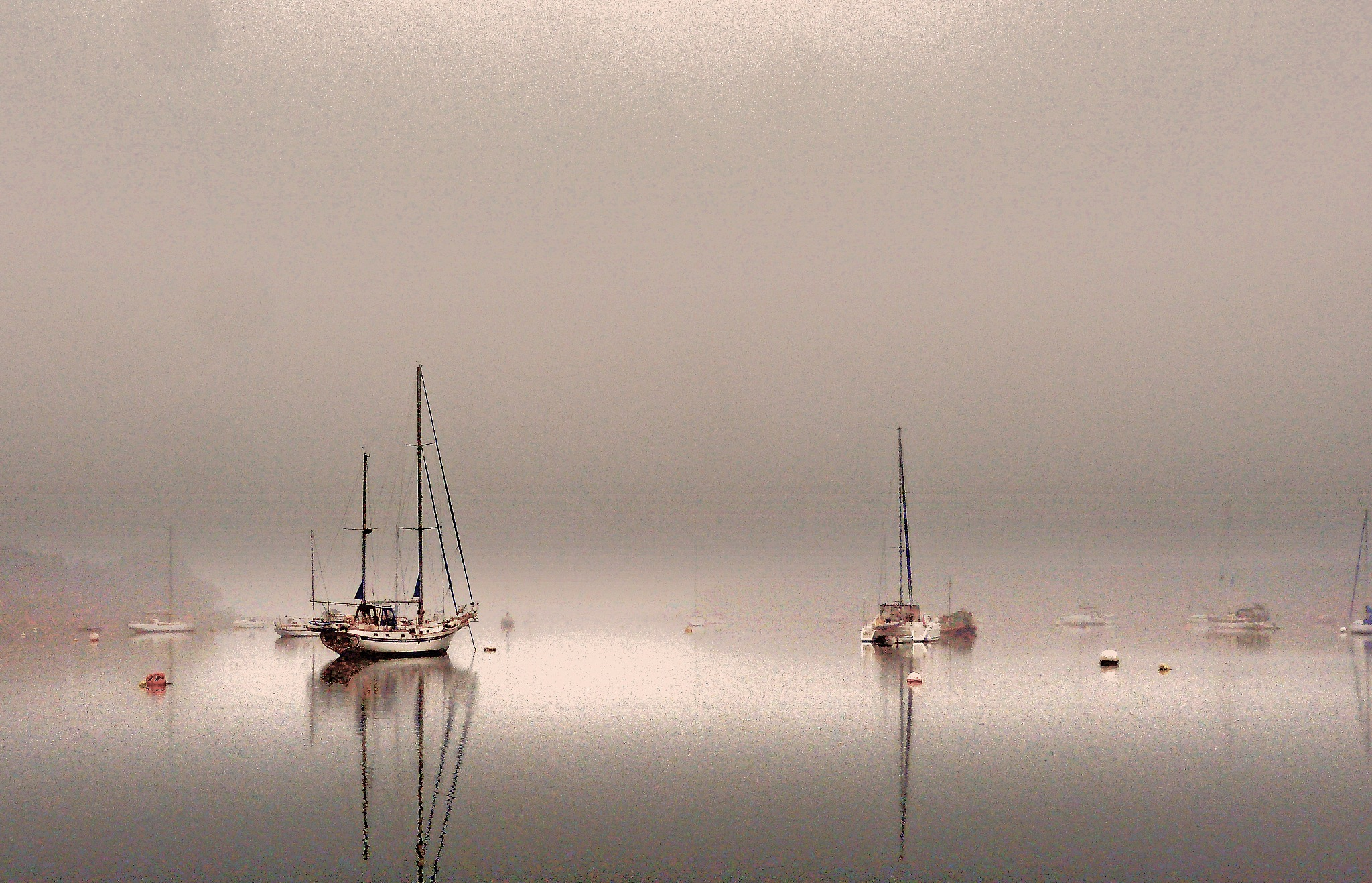 Dawn Mist by PeterMChambers