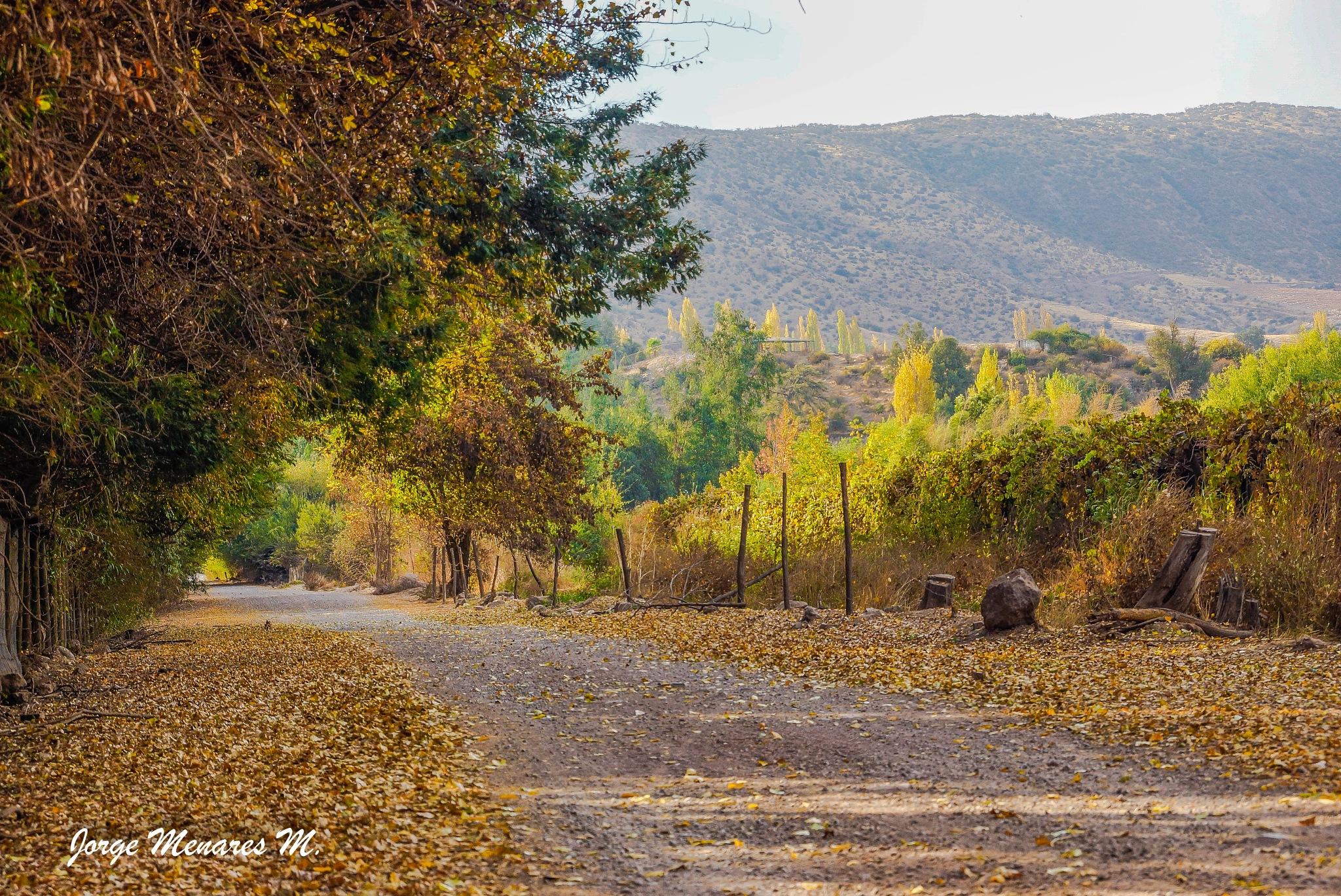 Los Molles-San Felipe-Chile by Jorge Menares Moreira