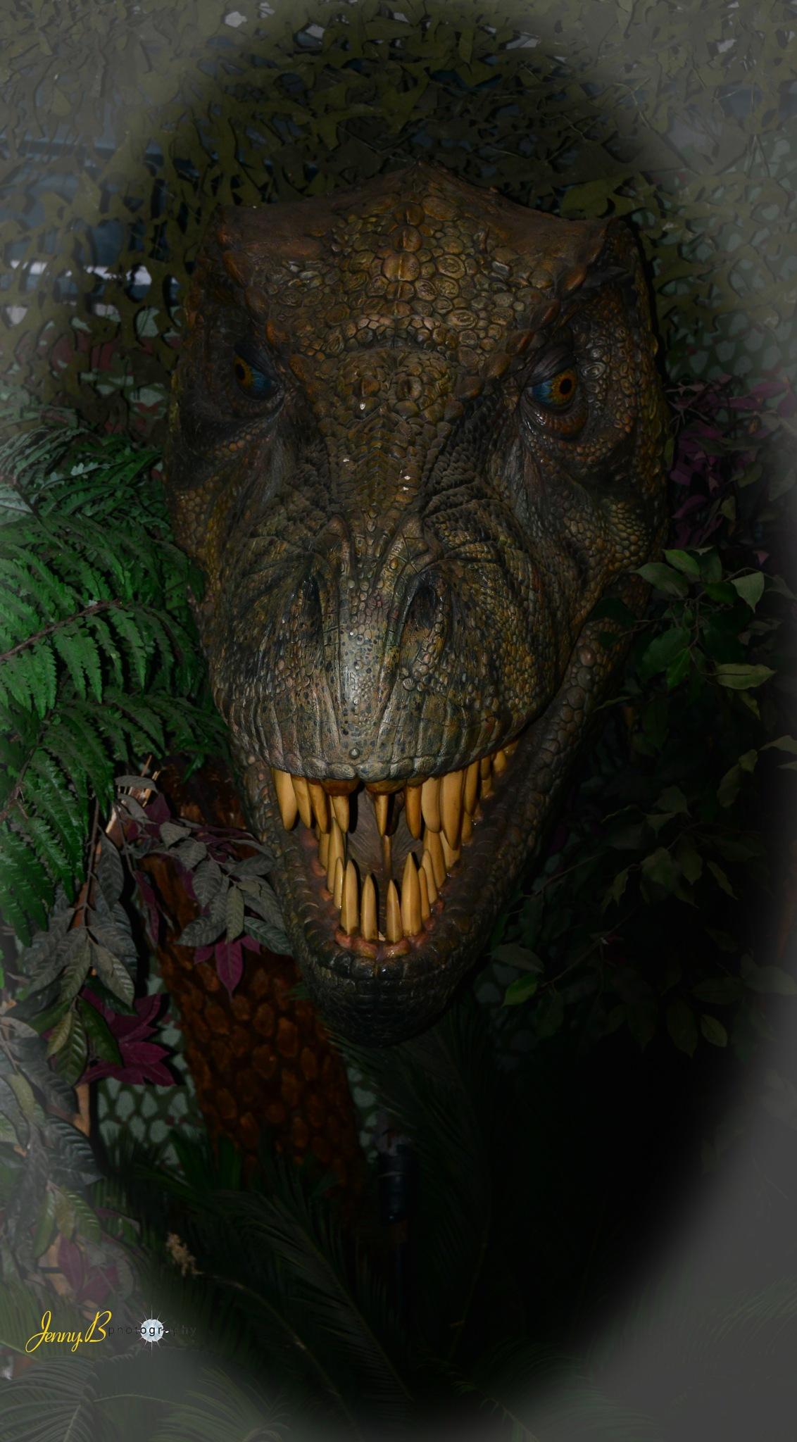 Dino by jb_127  ( jennybphotography)