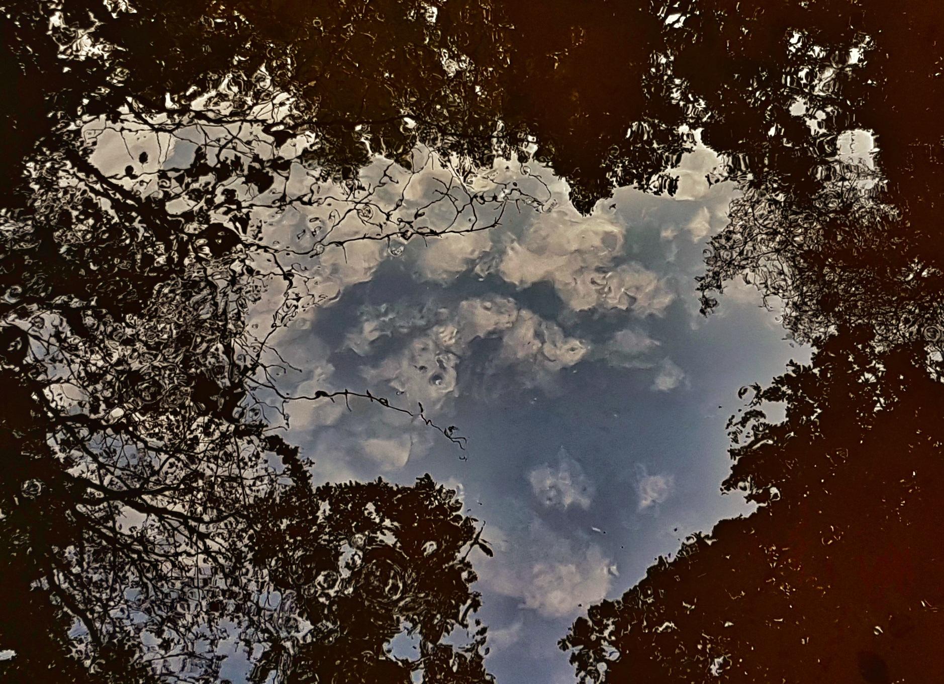 Clouds mirroring in the stream. by Jannie Looge