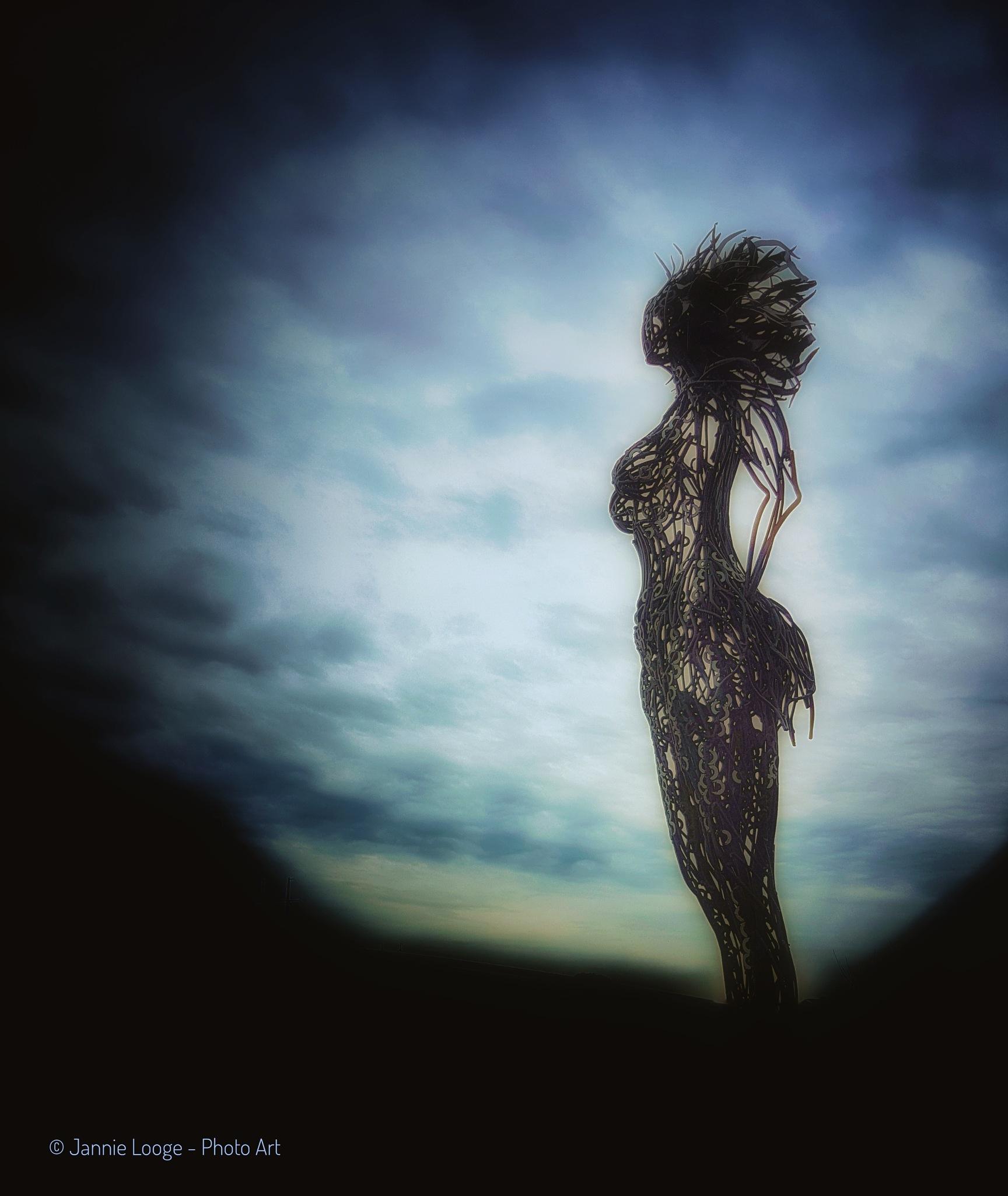 Untitled by Jannie Looge