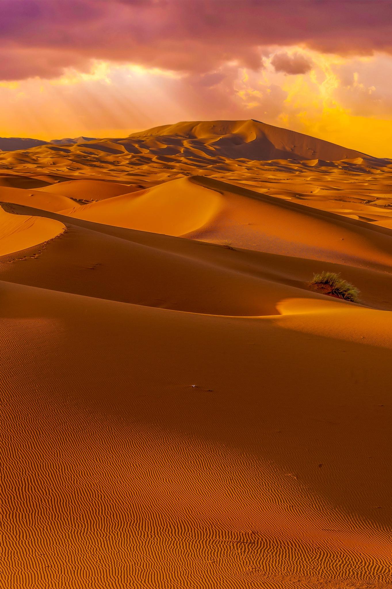 Merzouga desert by MohamedBachirBennani