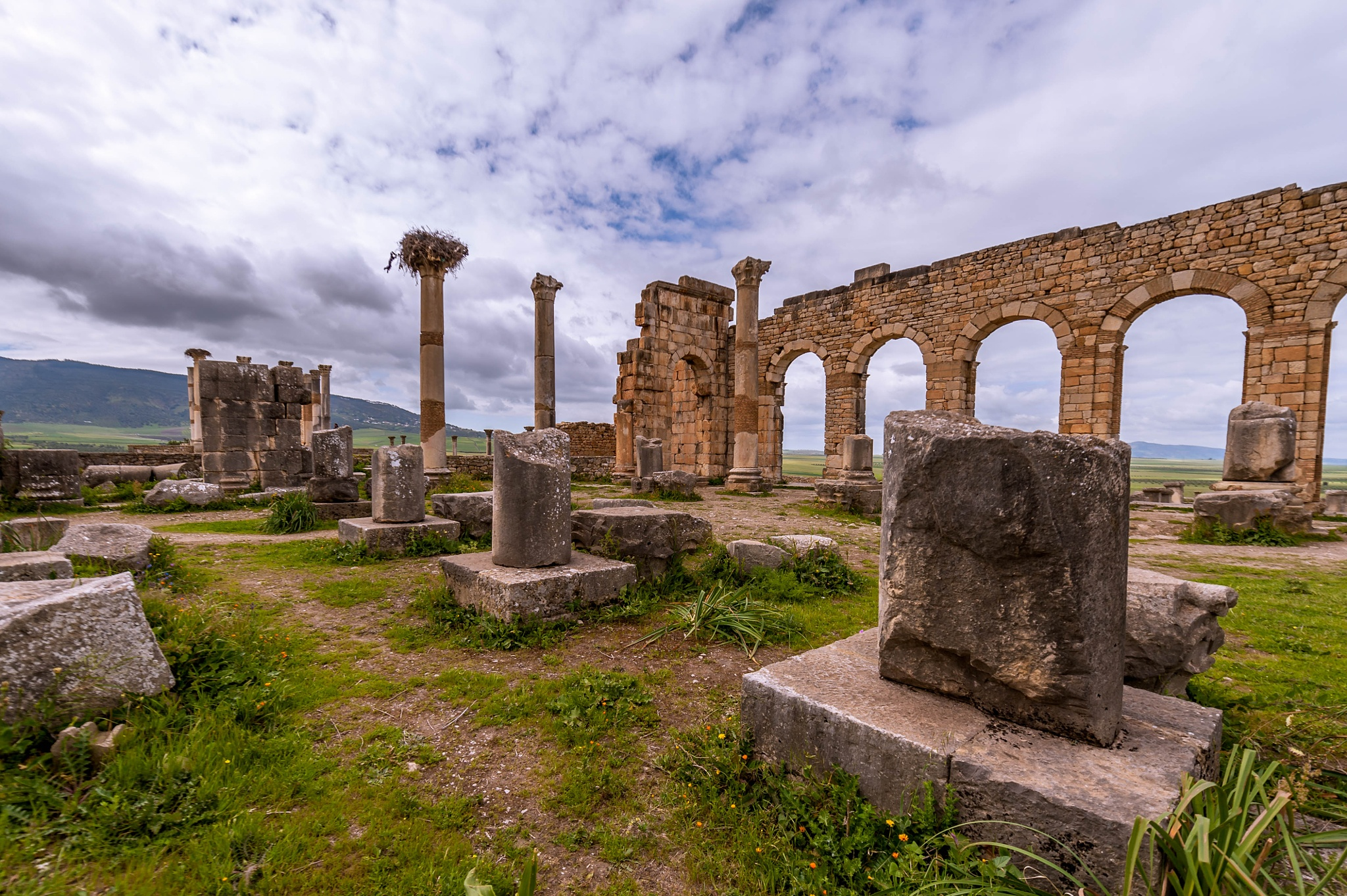 Site Archéologique Volubilis  by MohamedBachirBennani