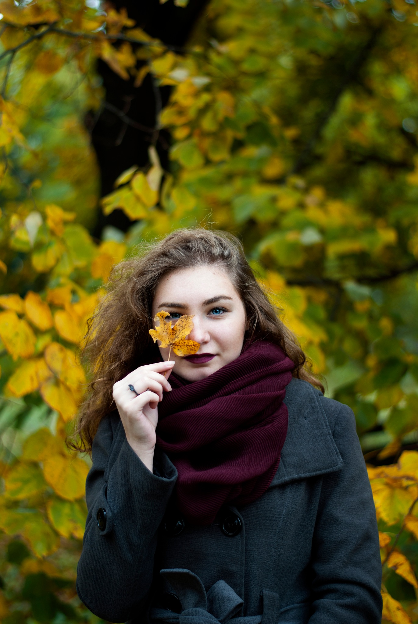 Beautiful autumn by jelenapejovic