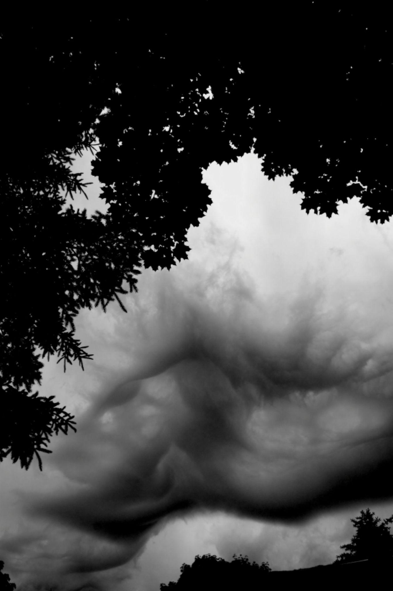 Cloudscape by JaniceArnottPhotography
