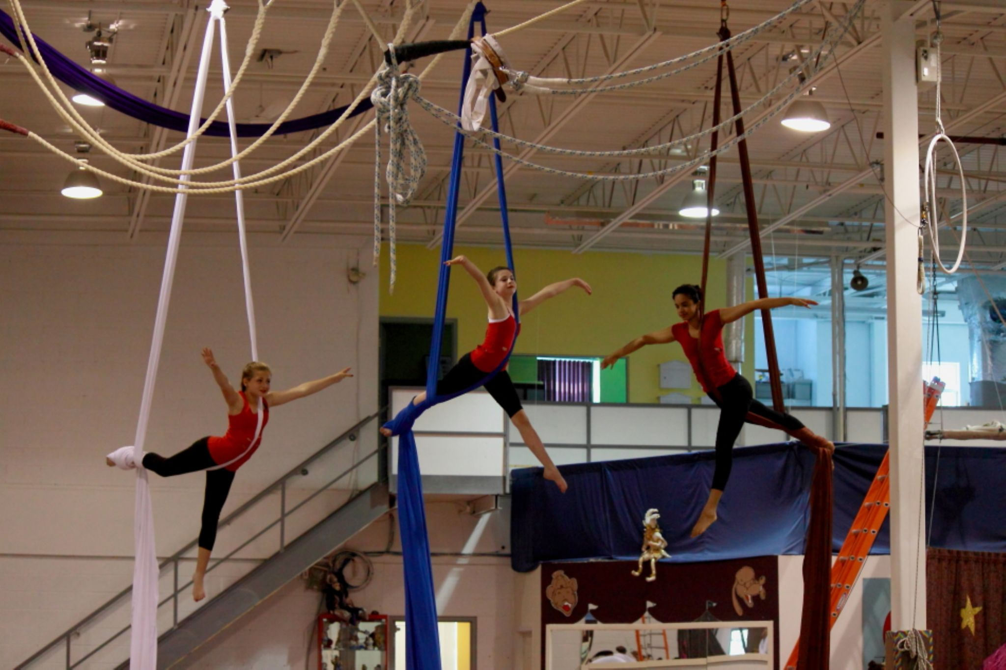 Silks Show (Girls in Training) by JaniceArnottPhotography