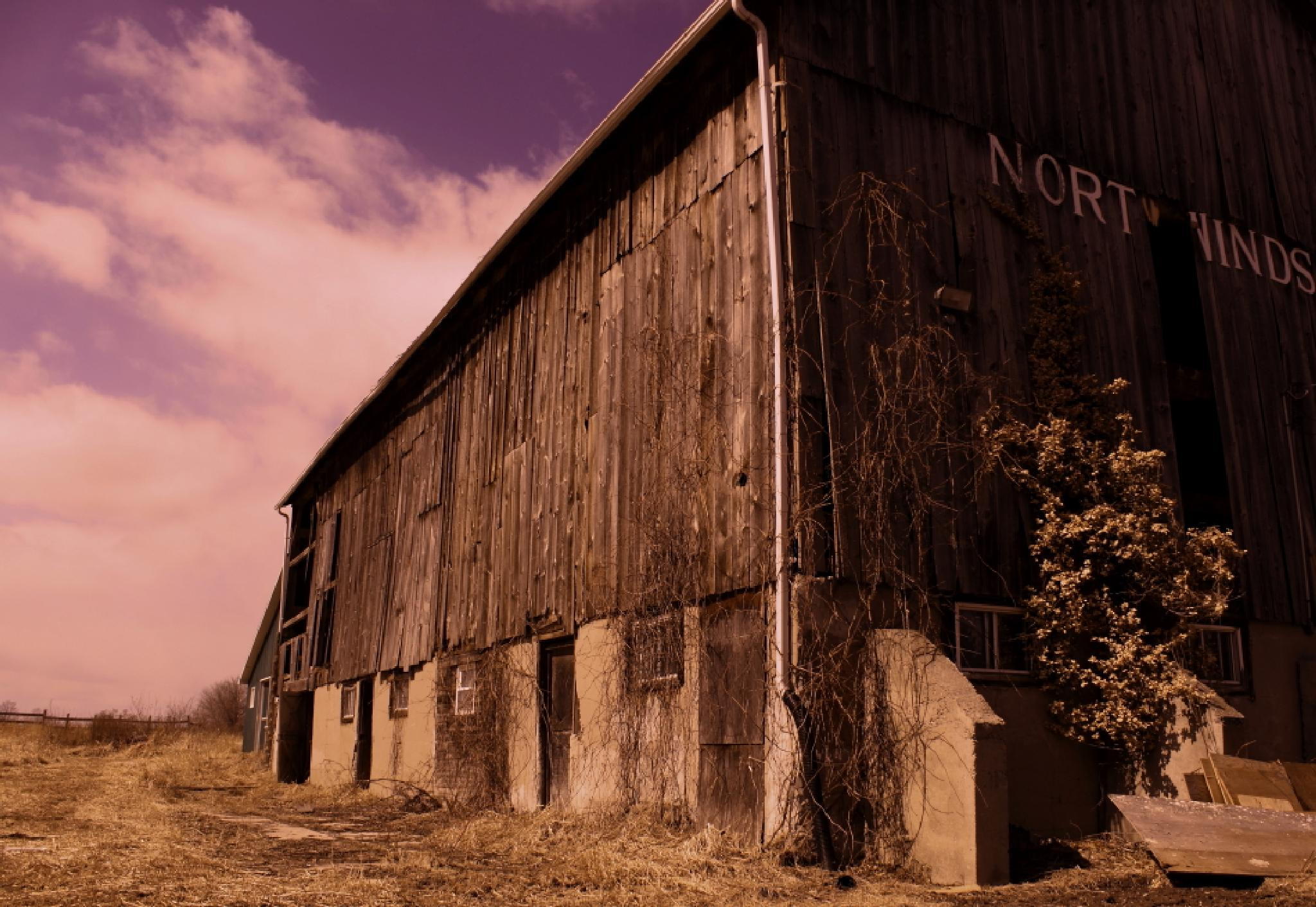 Old Barn by JaniceArnottPhotography