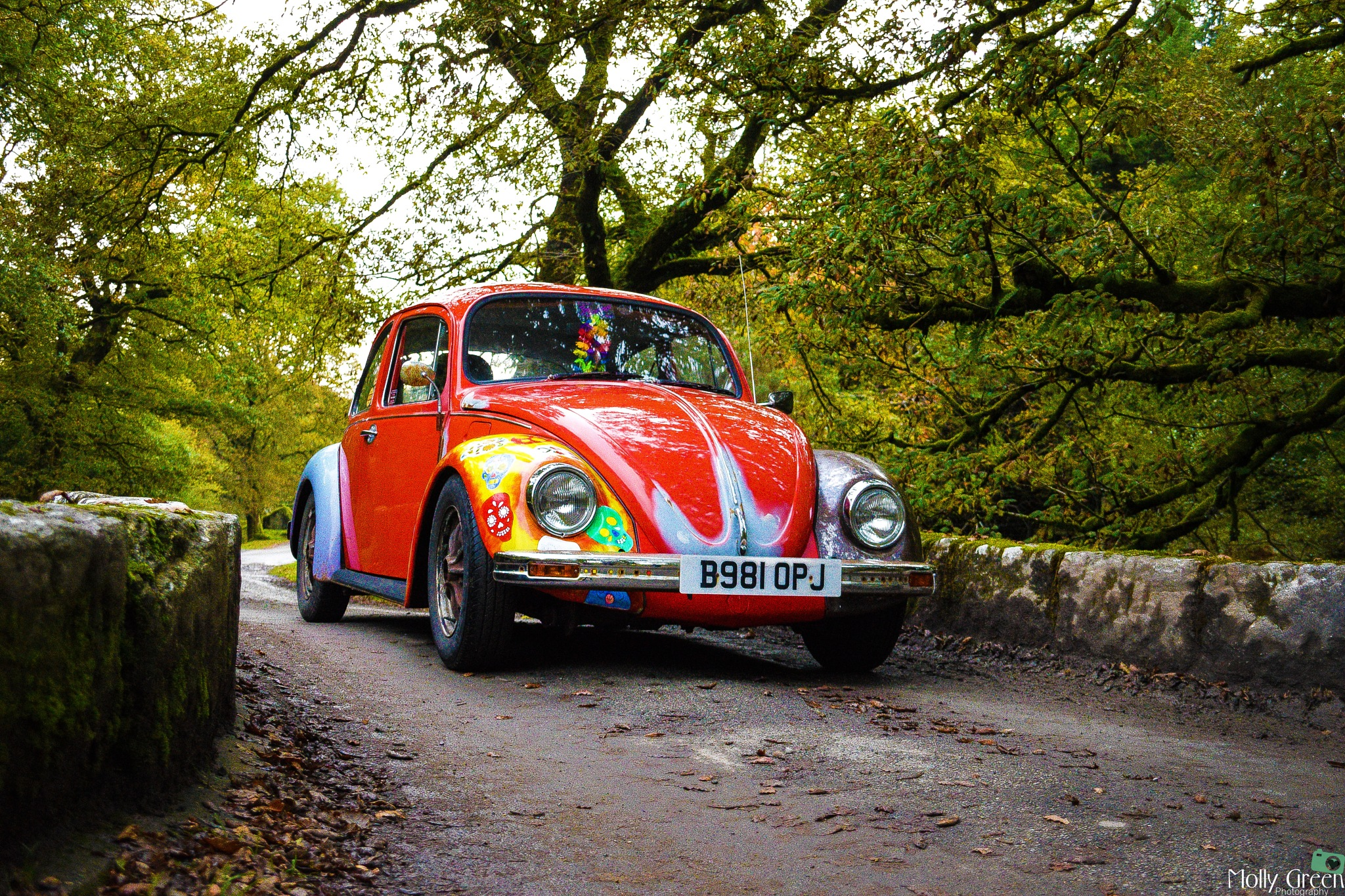 1984 VW Beetle by MollyGreenPhotography