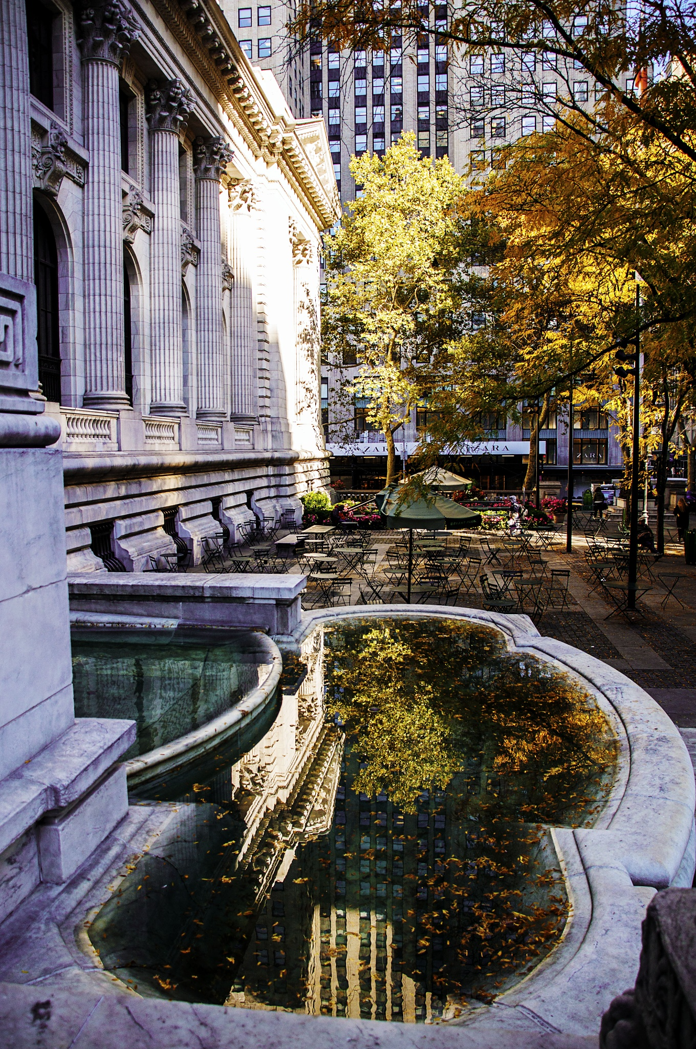 NYC Public Library by Jacqueline Rose