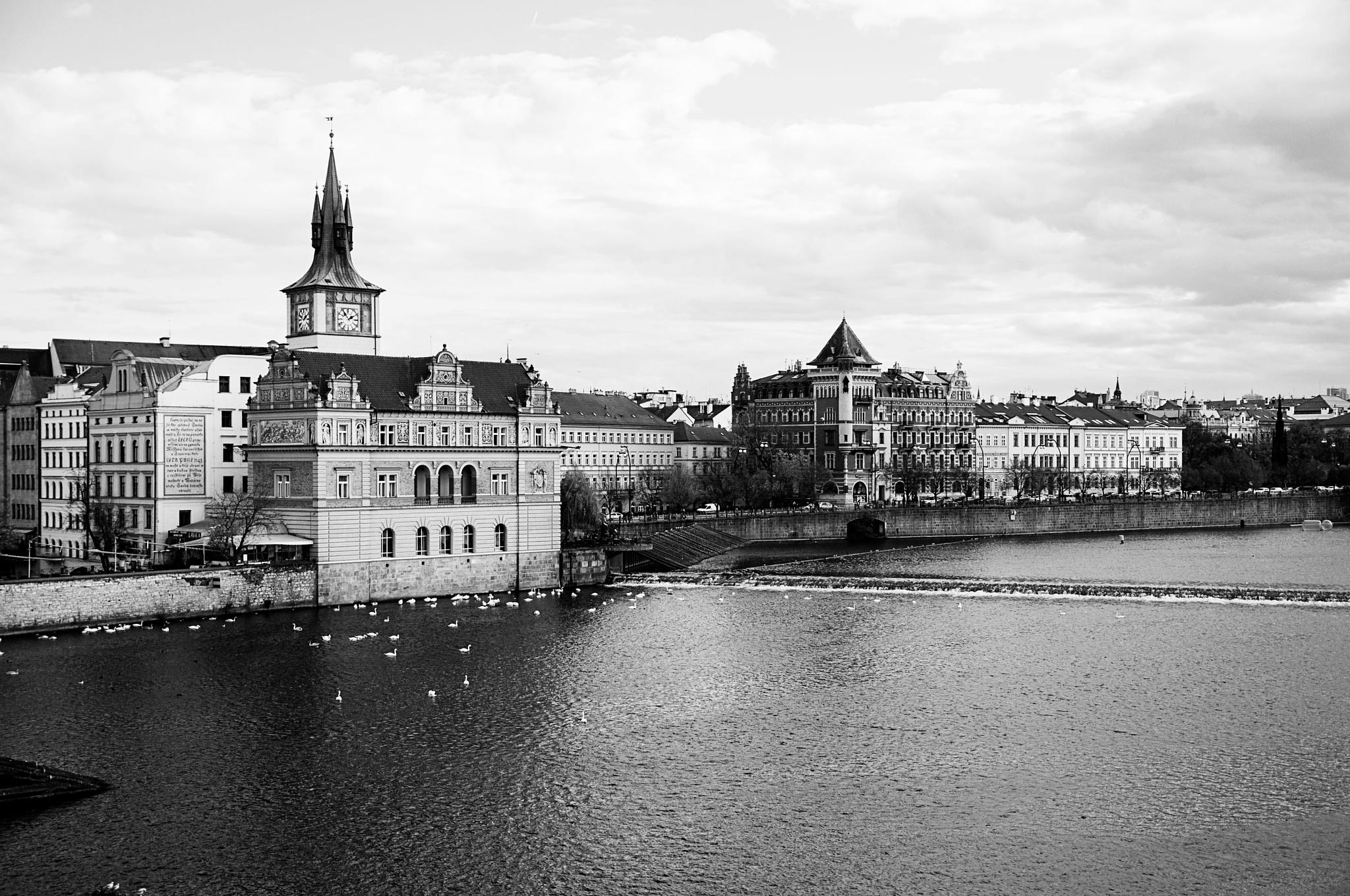 Prague by Jacqueline Rose