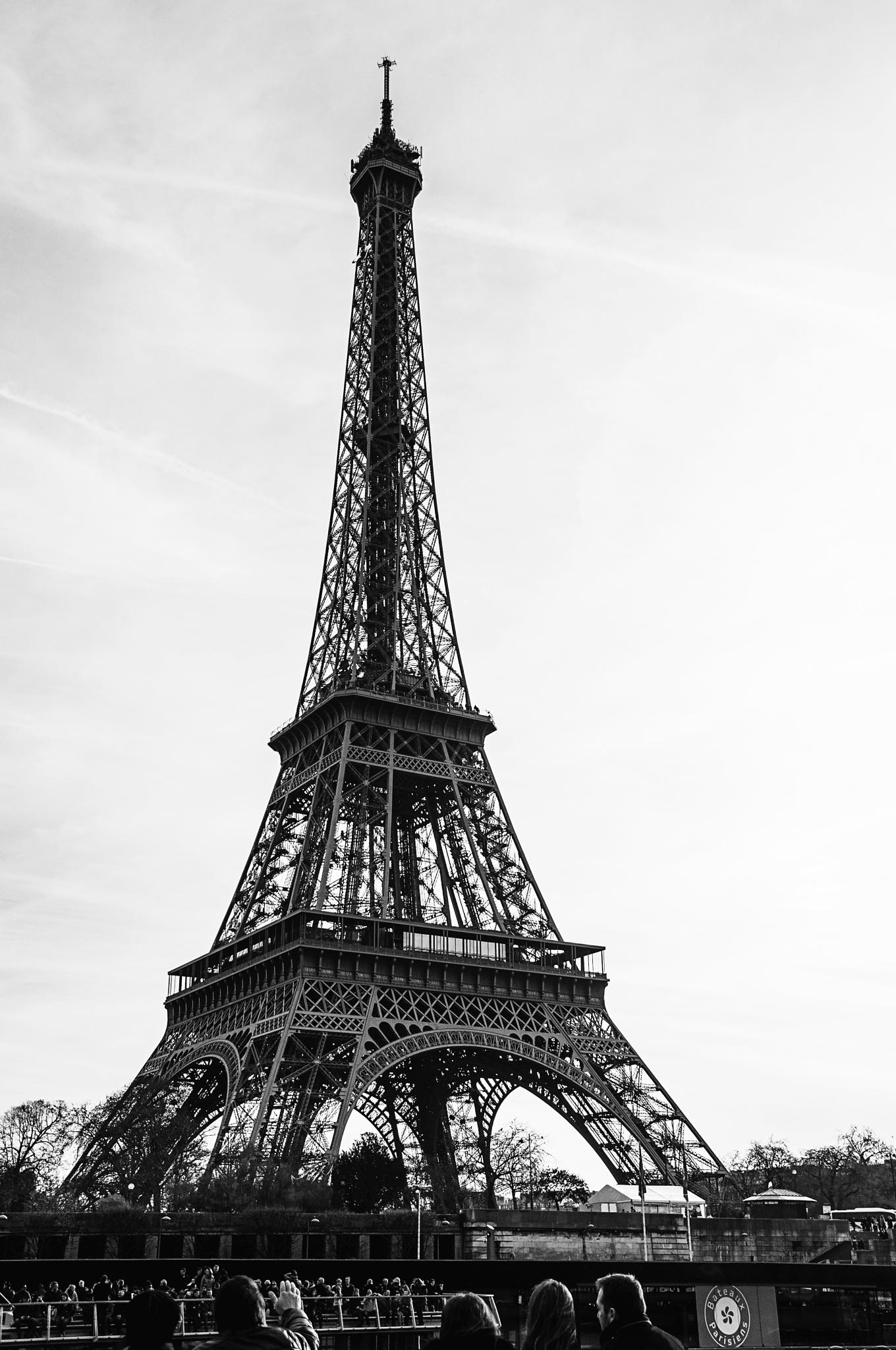 Tour de Eiffel by Jacqueline Rose