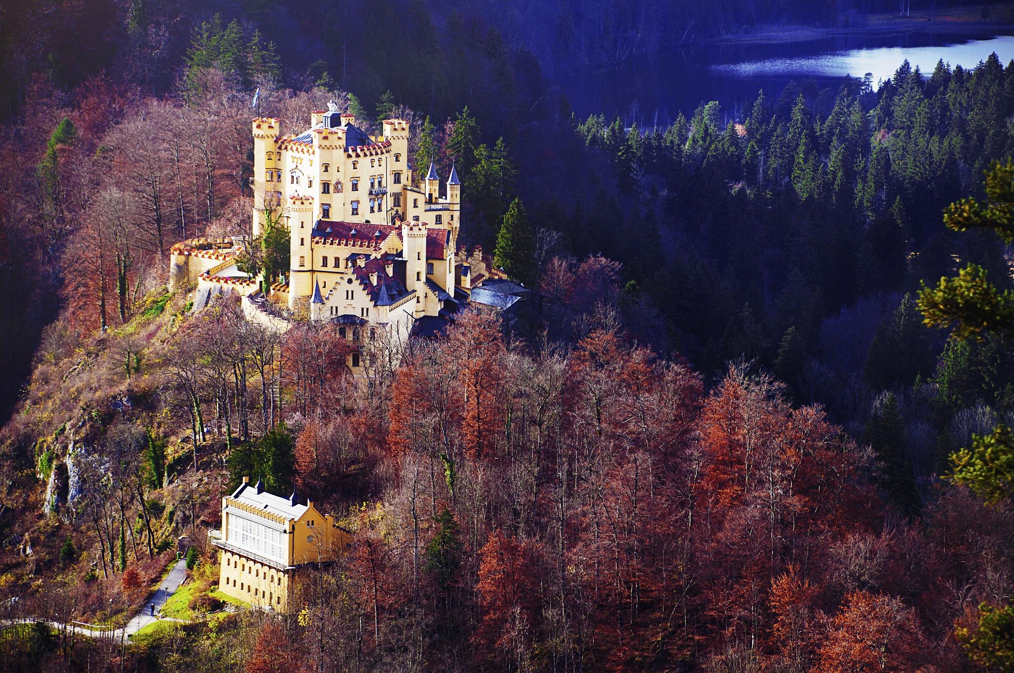 Bavaria by Jacqueline Rose
