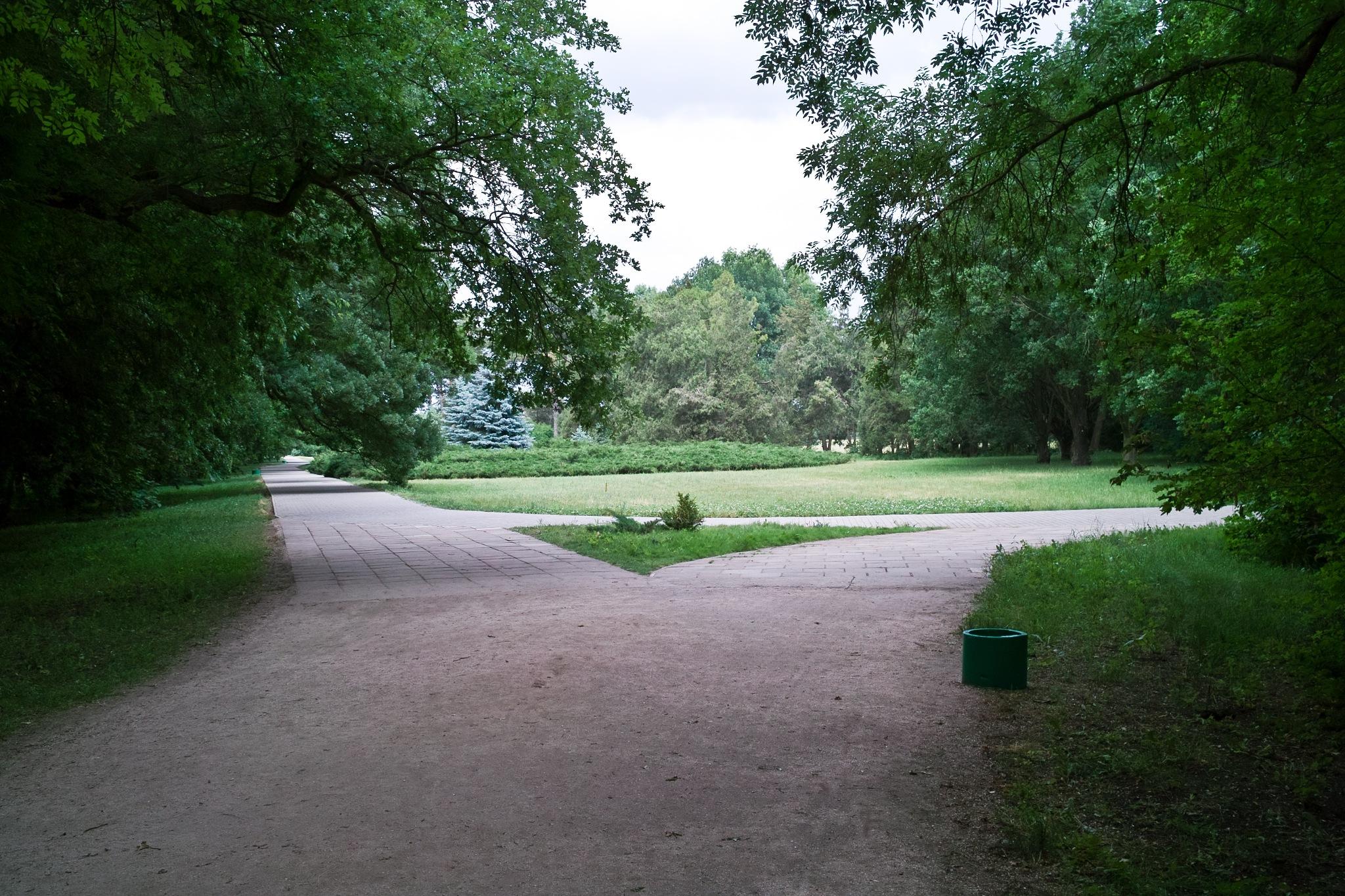 Развилка в парке by DimaShevchuk