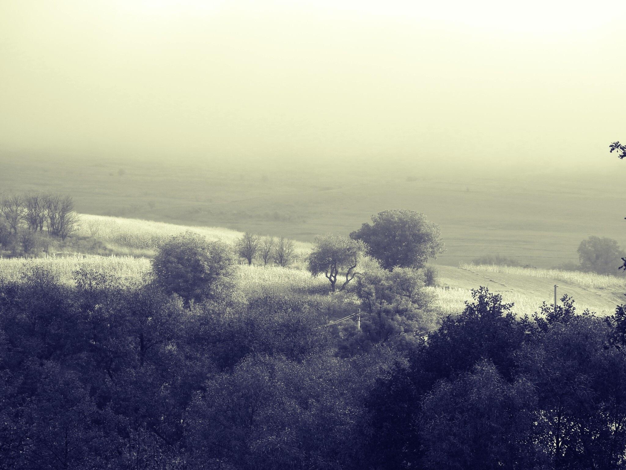 Landscape by olcsi9