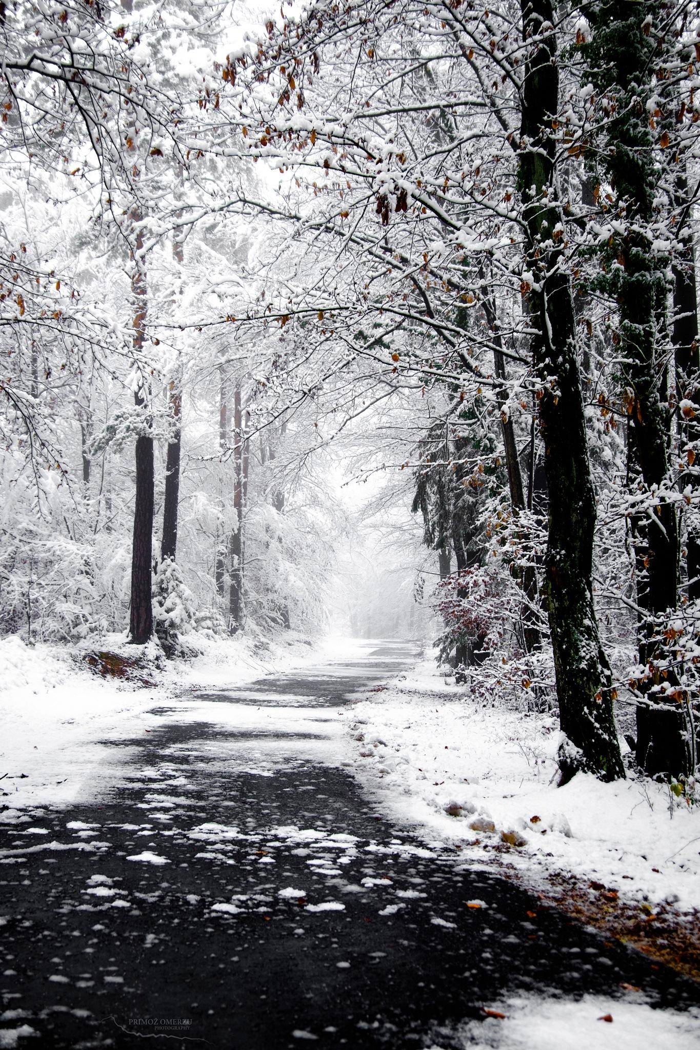 Winter road by Primož Omerzu