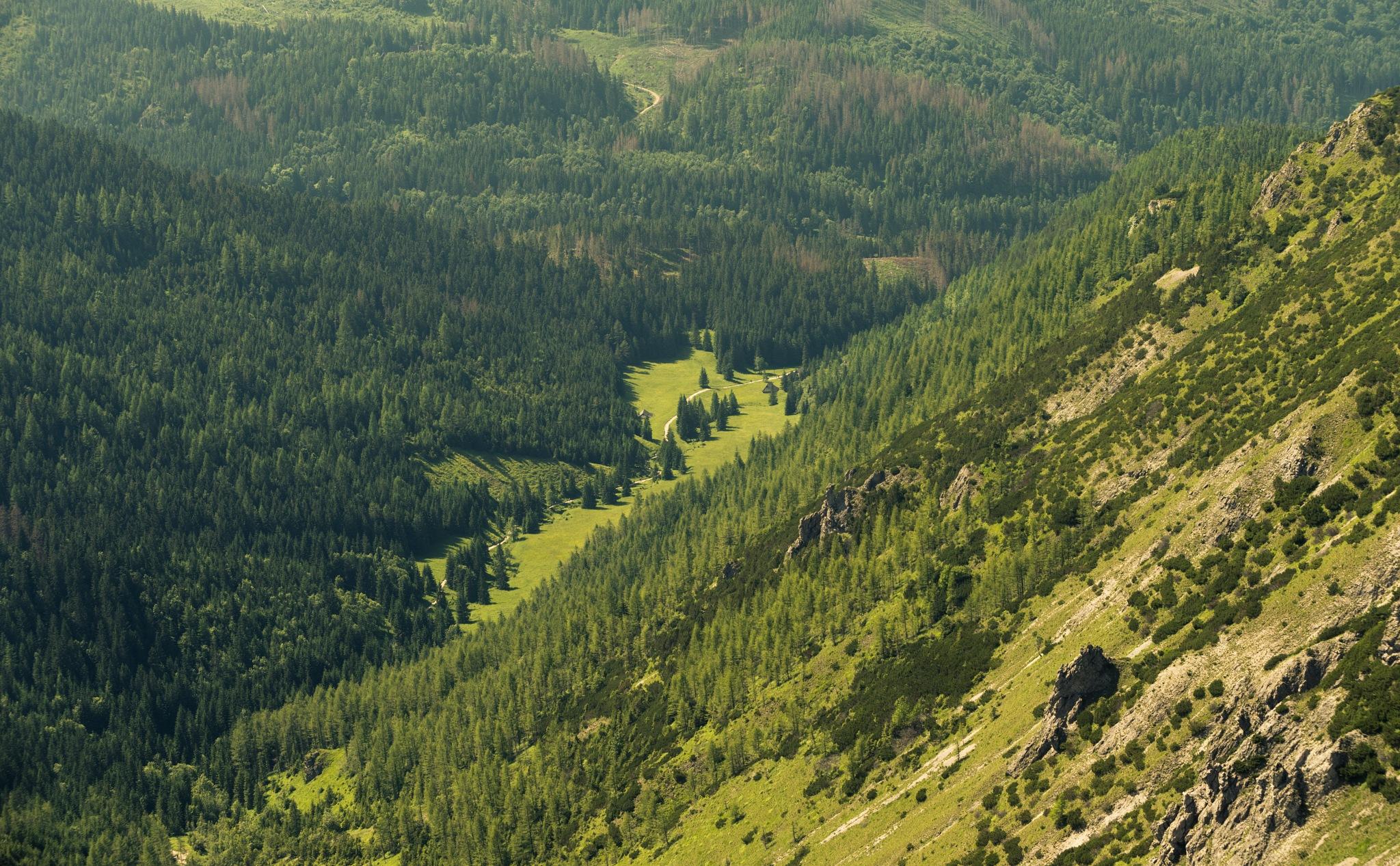 Jaworzynka Valley by tOmek