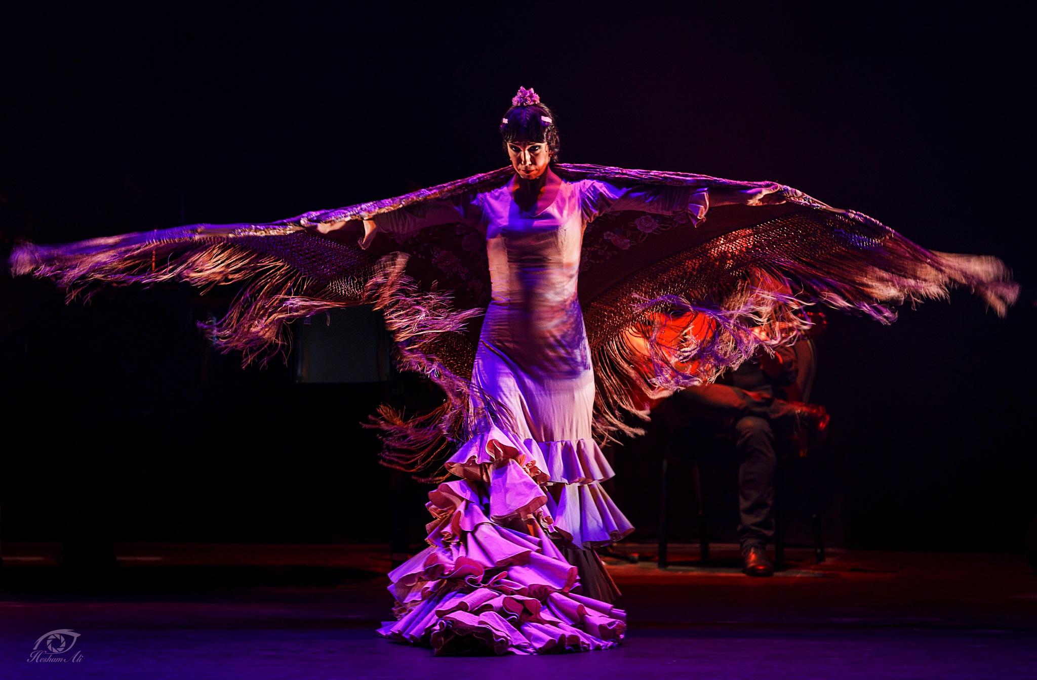 FLAMENCO DANCER  by Hesham Ali
