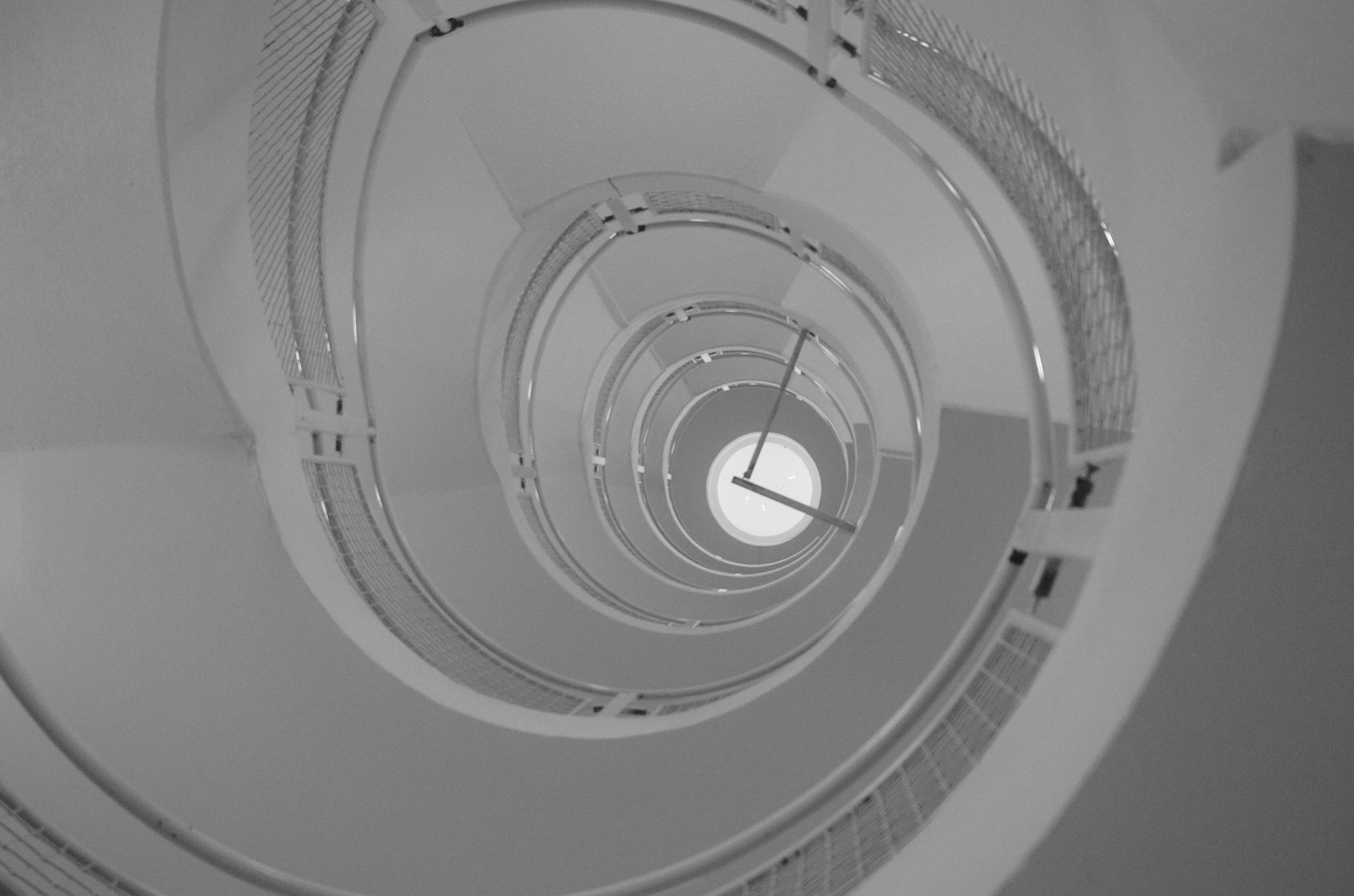 spiral  by Max Cesare Parodi