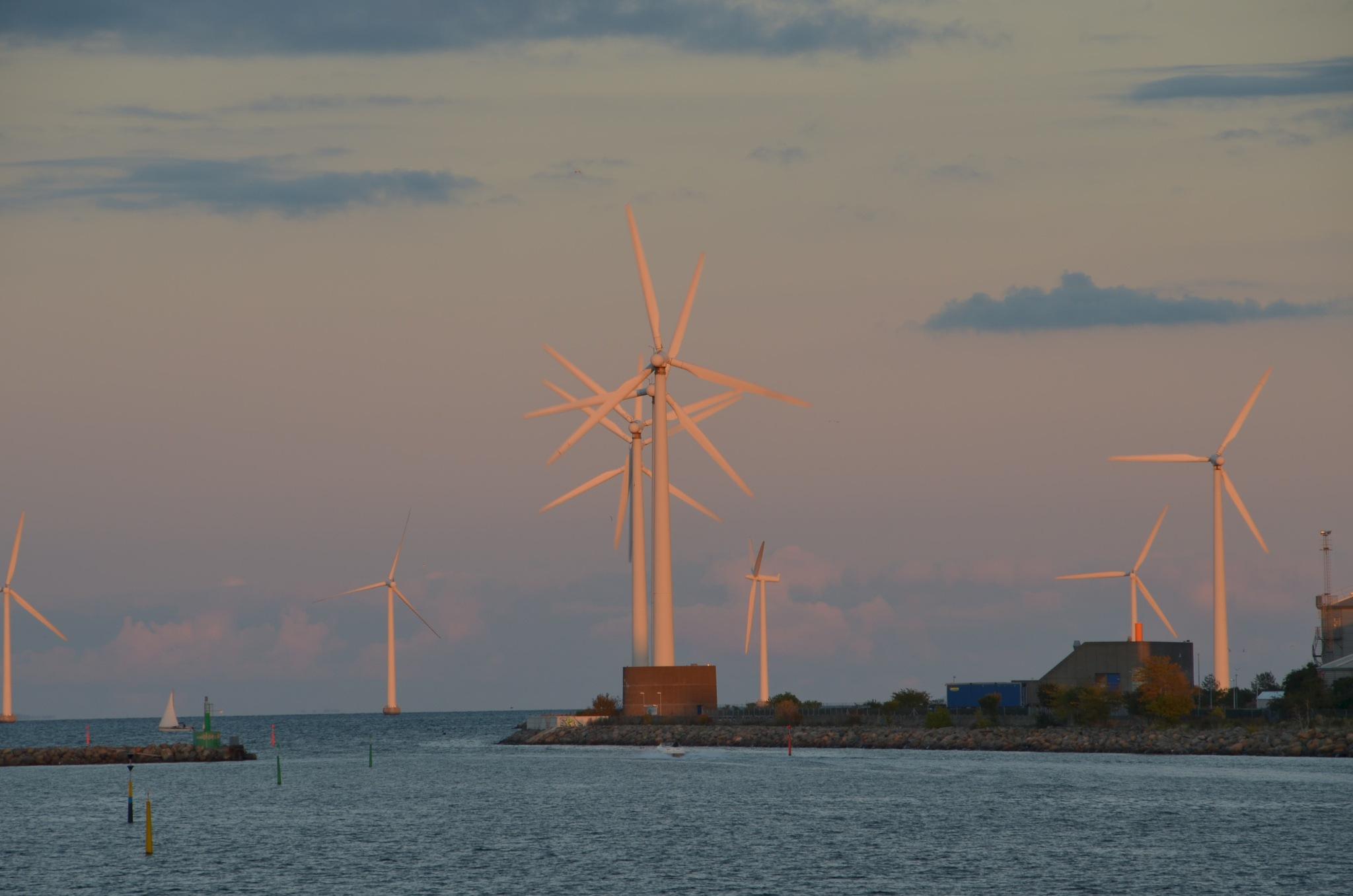 wind turbines outside Copenhagen by Max Cesare Parodi