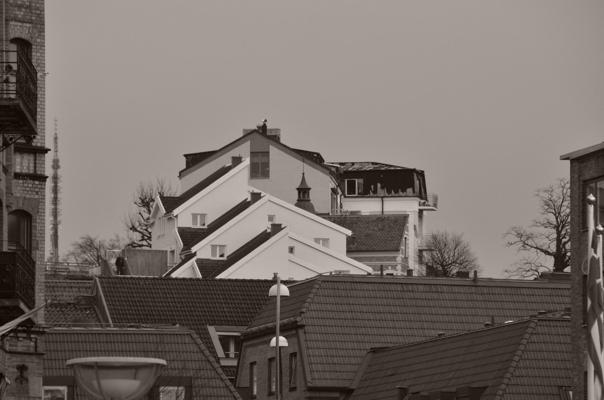 hus gavlar by Max Cesare Parodi