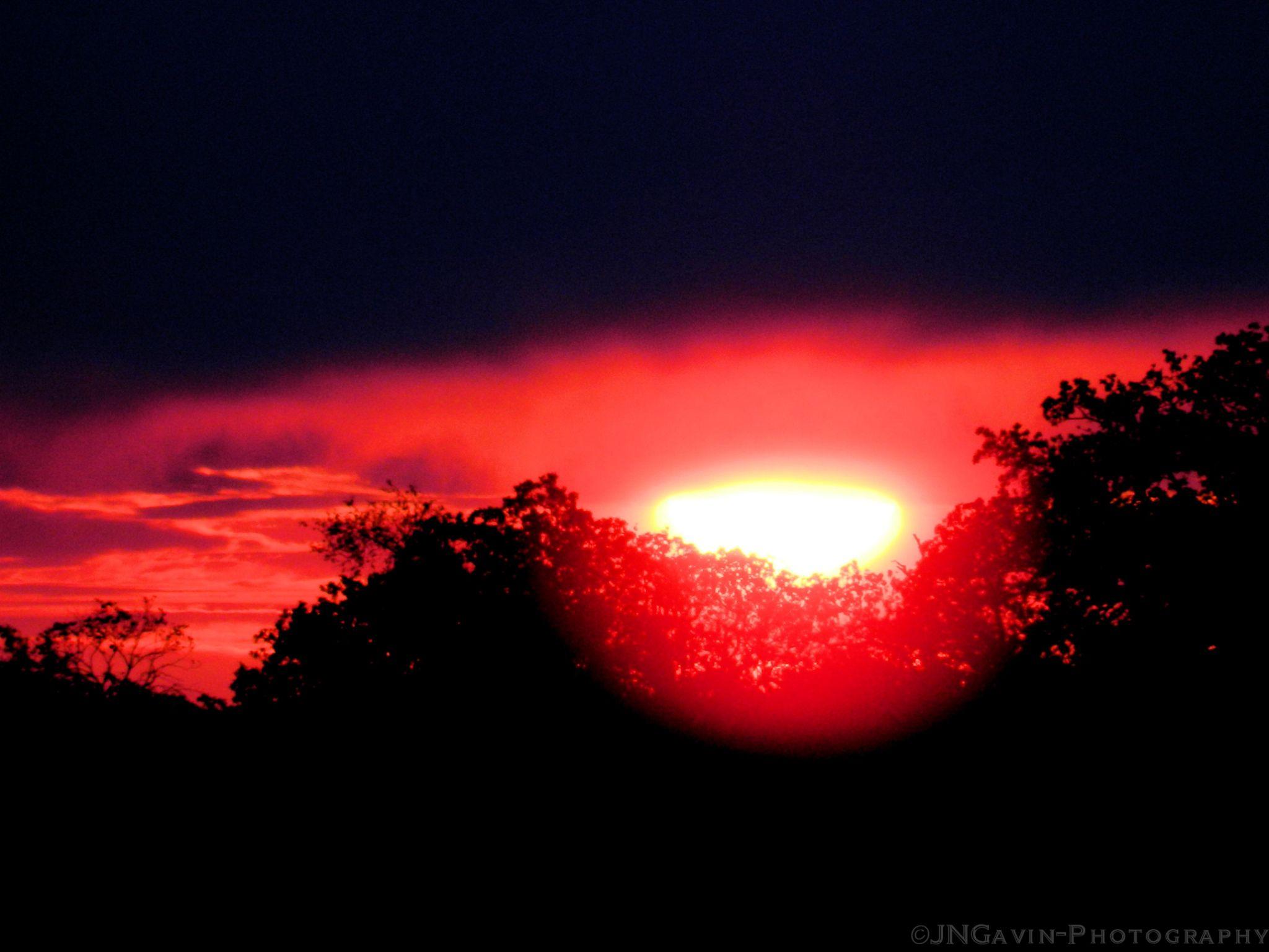Morning Glow by John Gavin