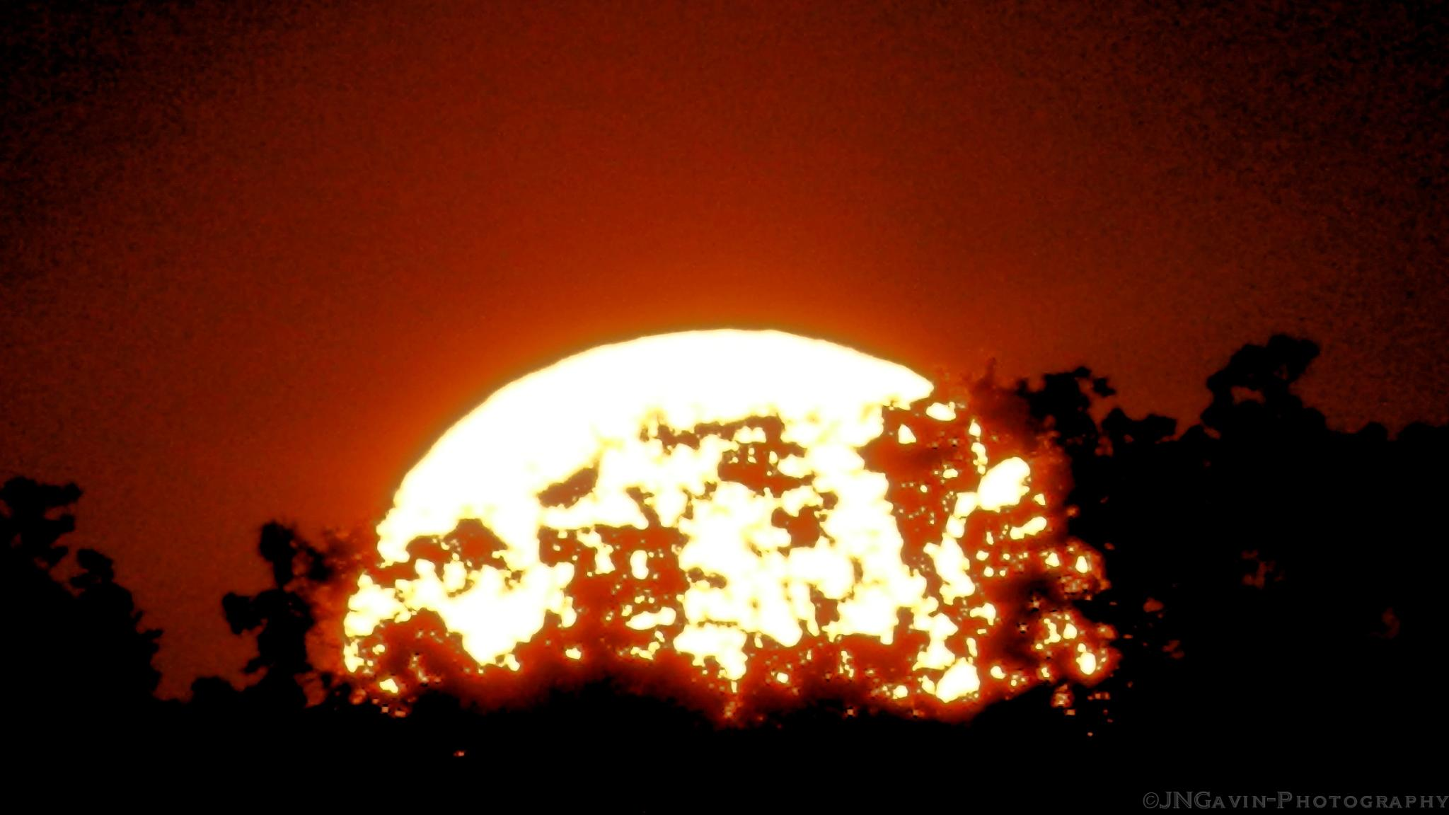 Fireball by John Gavin