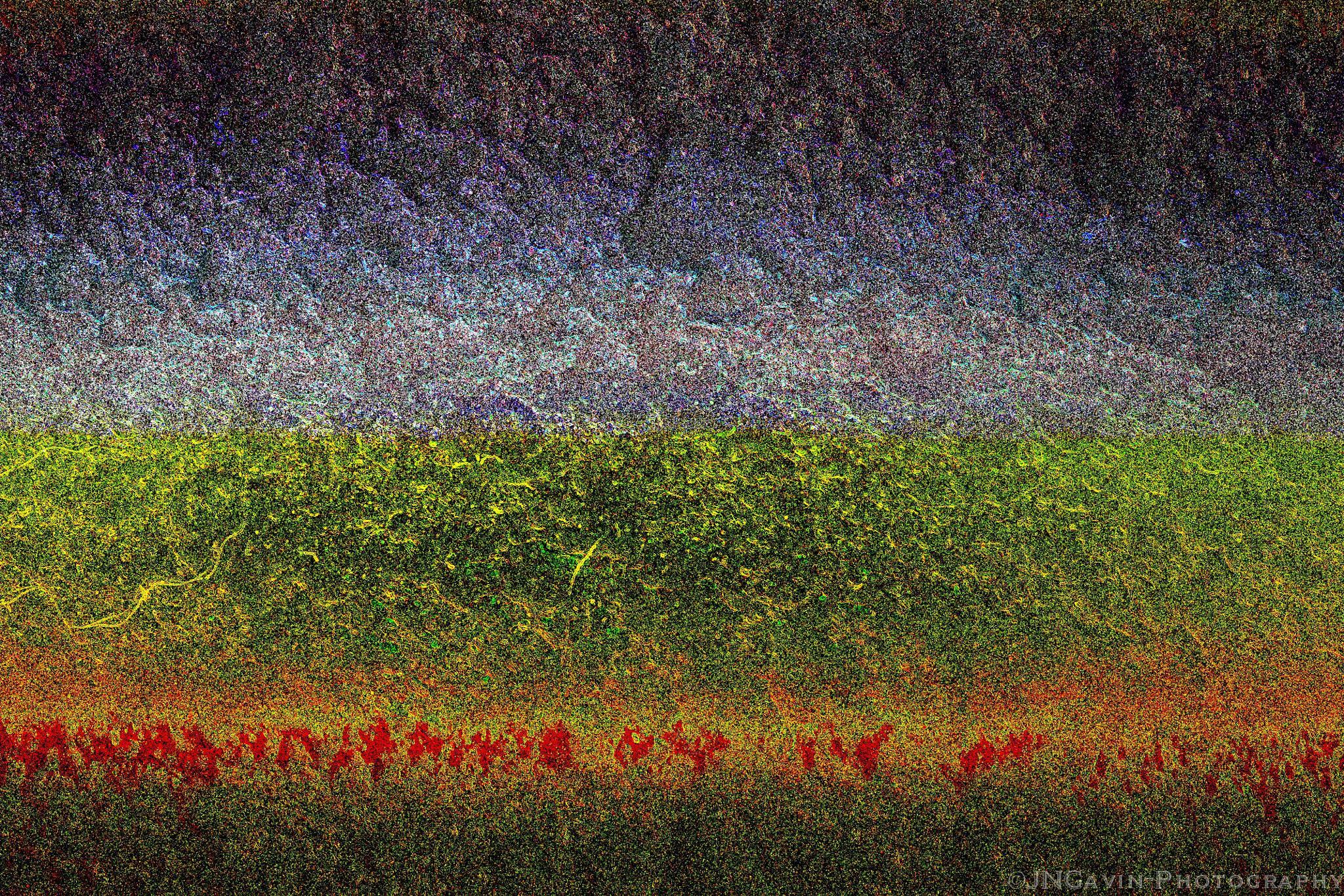 Greener Pastures by John Gavin