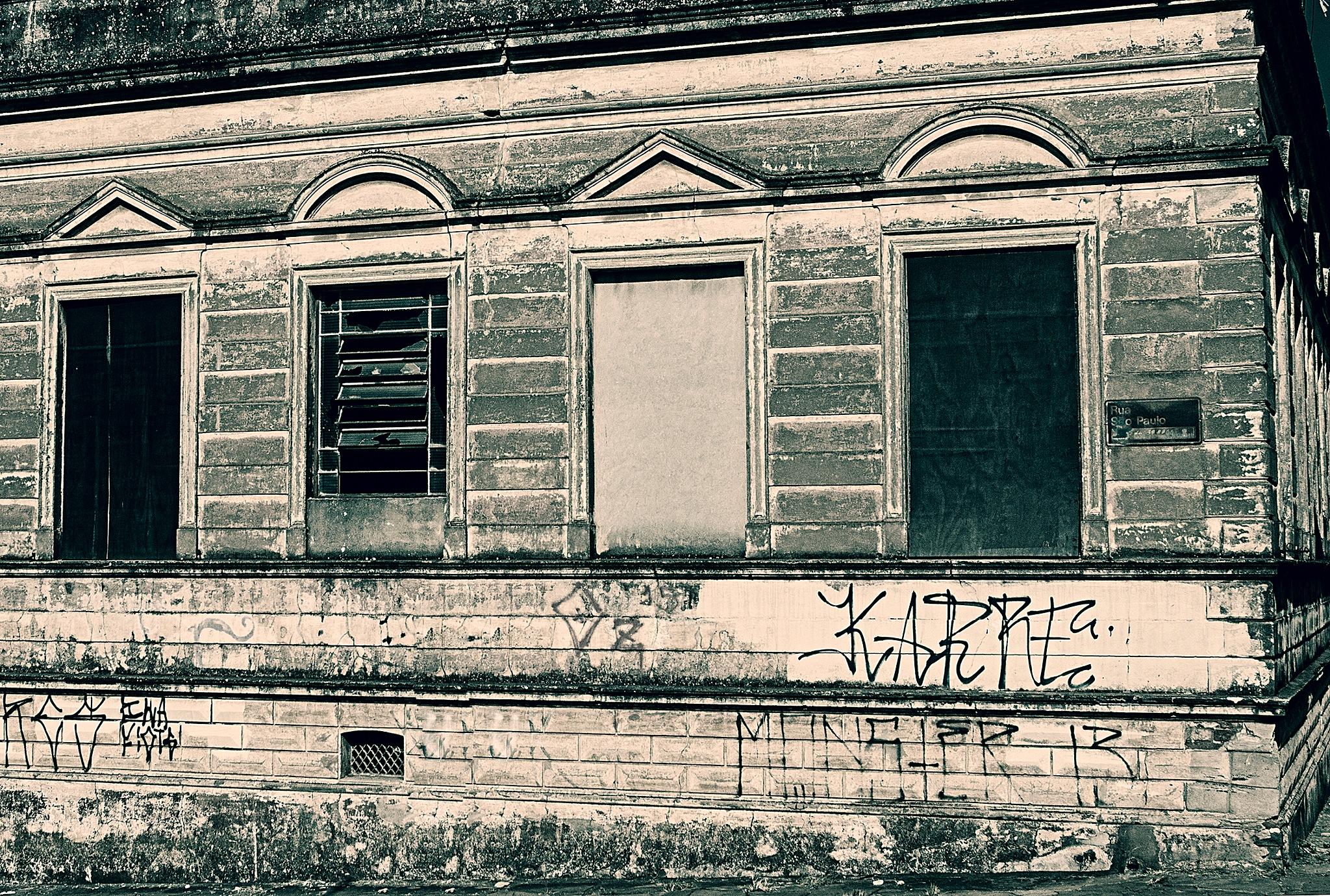 the countess house 2 by Luiz Caju