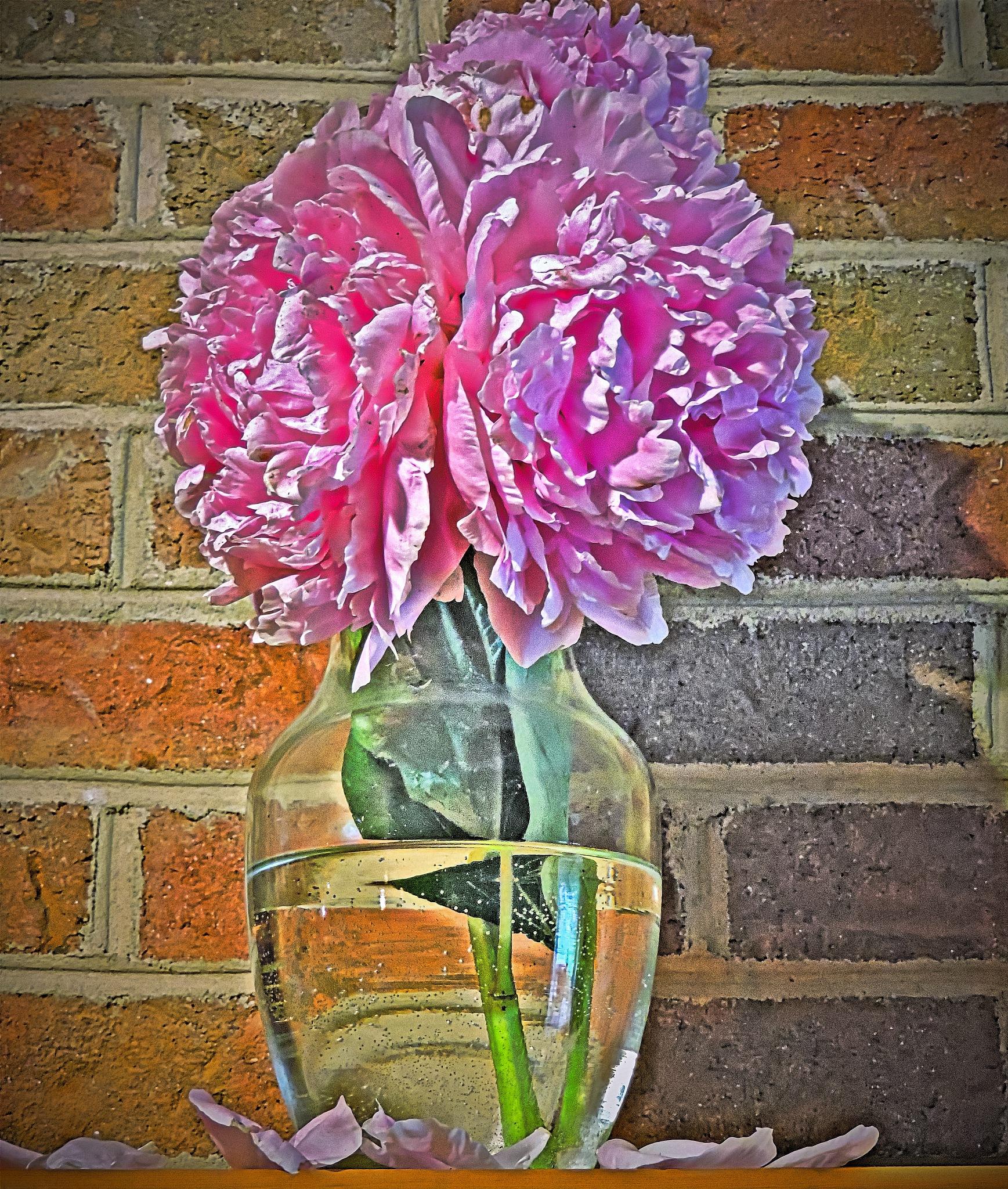 Vase Of Flowers by Melanie Goins