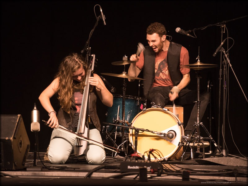 The Accidentals  by David Birdsong