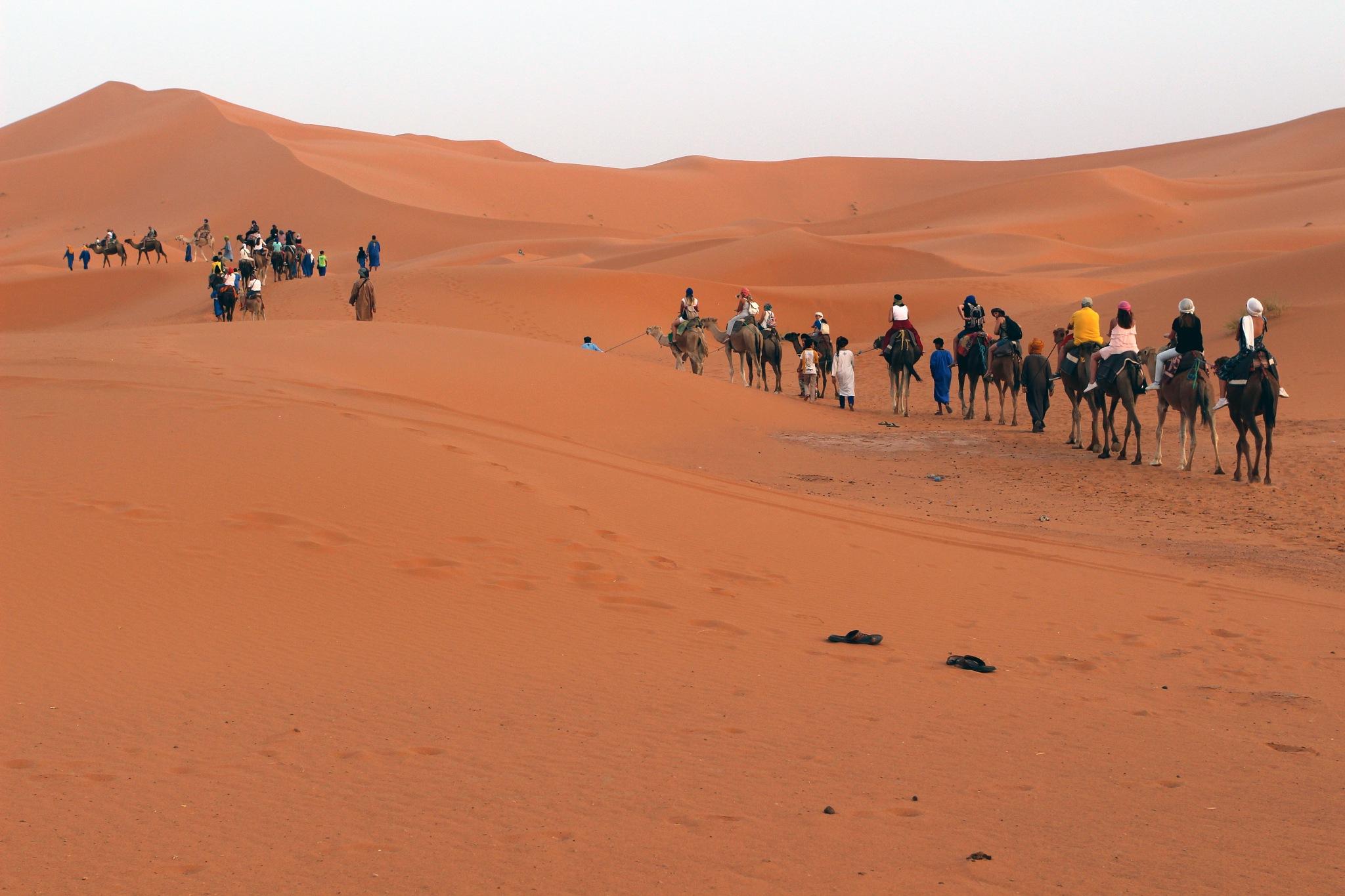 camel caravans by BlackMagicWoman