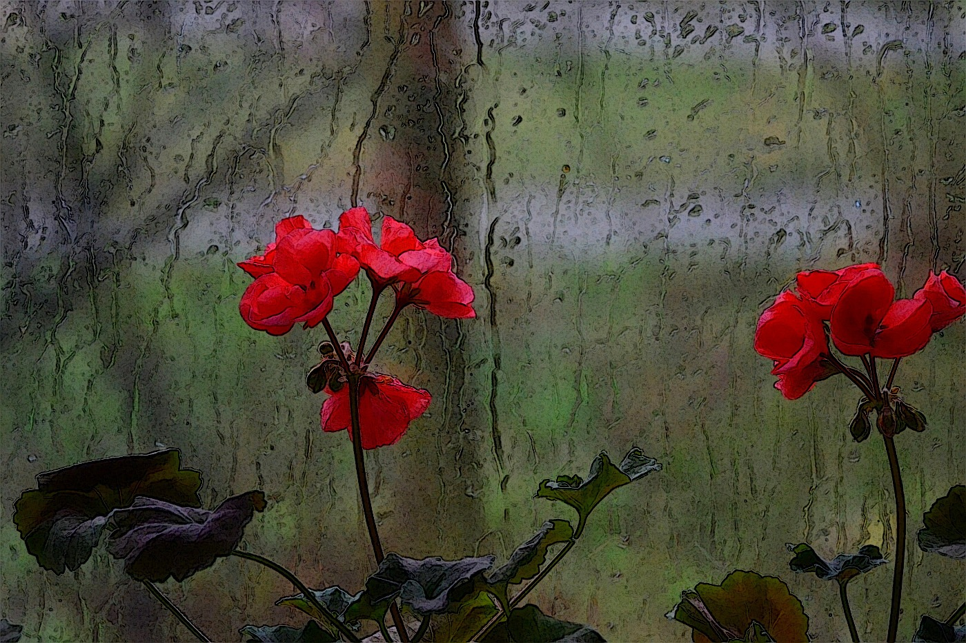 Rain by David Sjöstrand