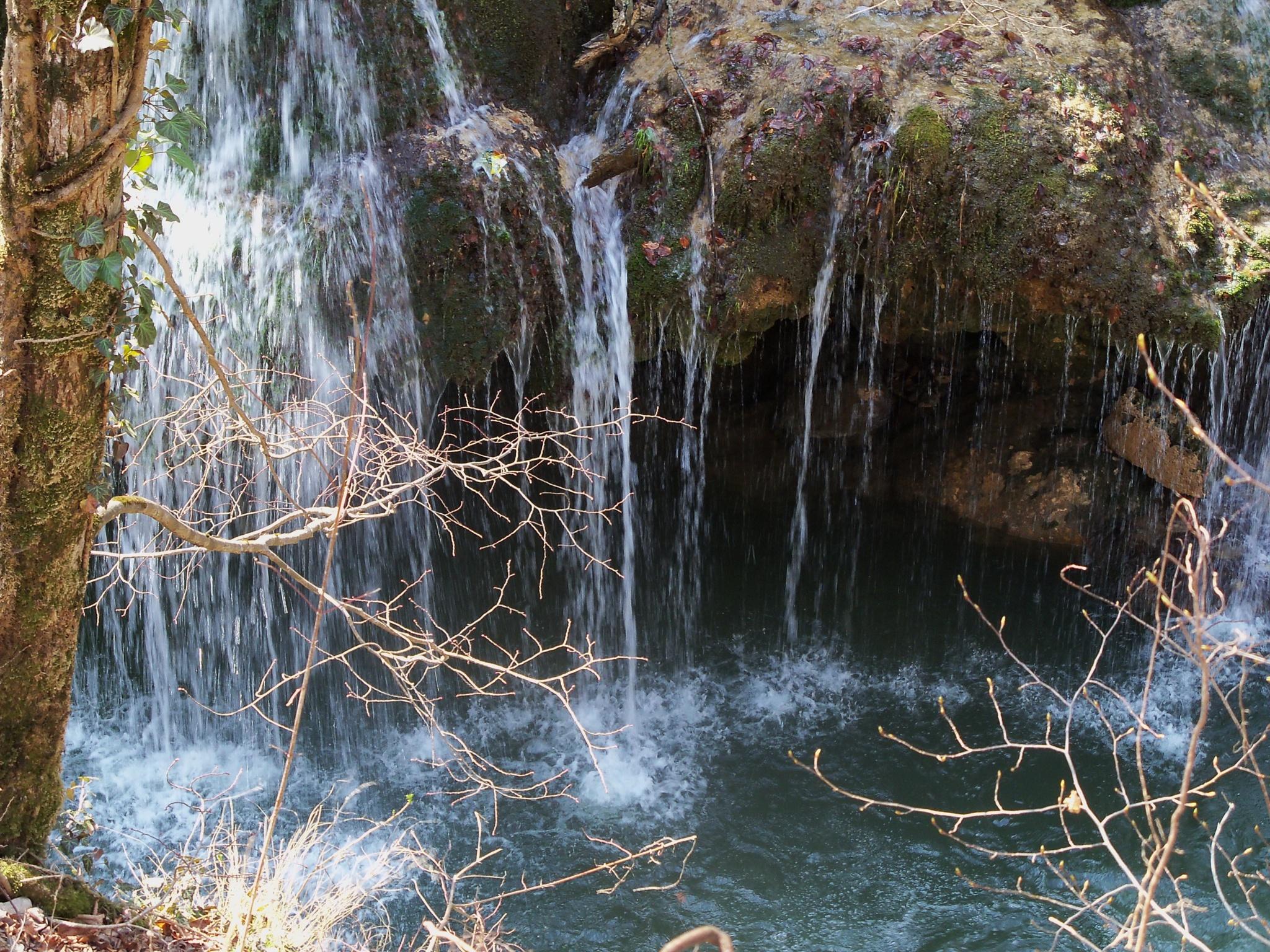 waterfall - Bigar by Ionela Garovat