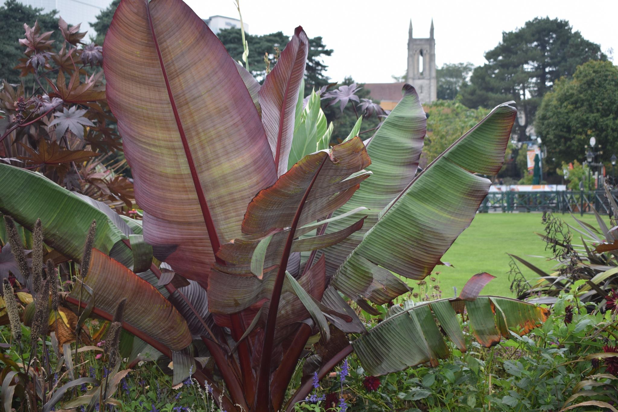 Upper Gardens Bournemouth by Mad_Mart