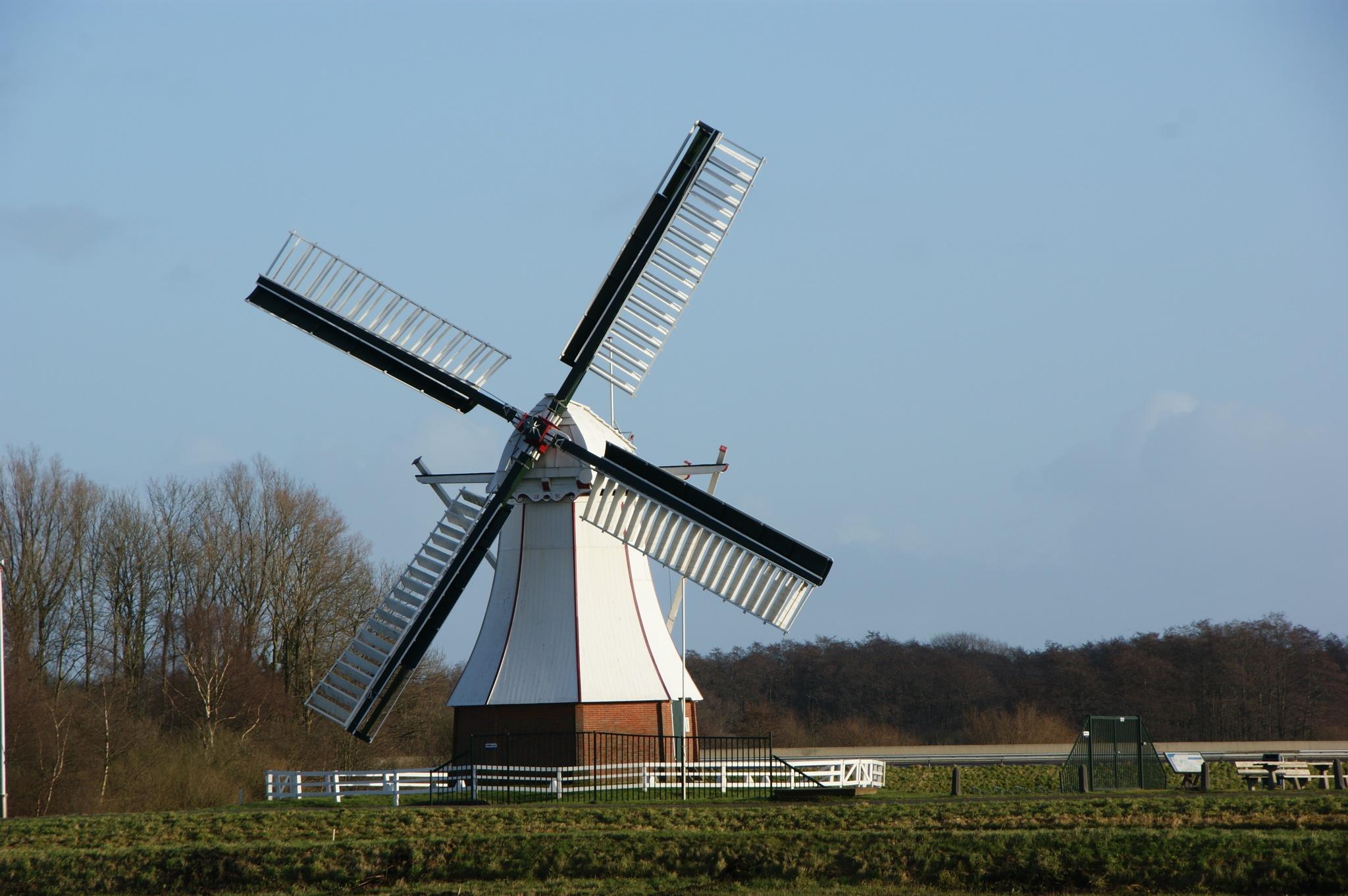 Dutch mill by Schuring