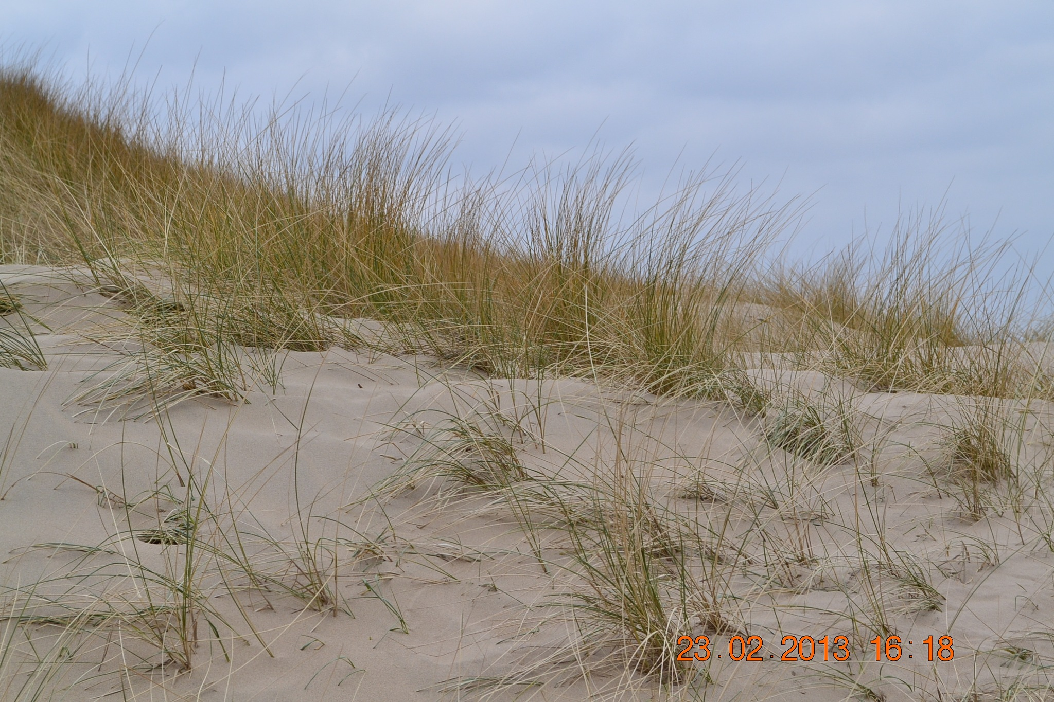 Dunes .... we need them by Justmetoo