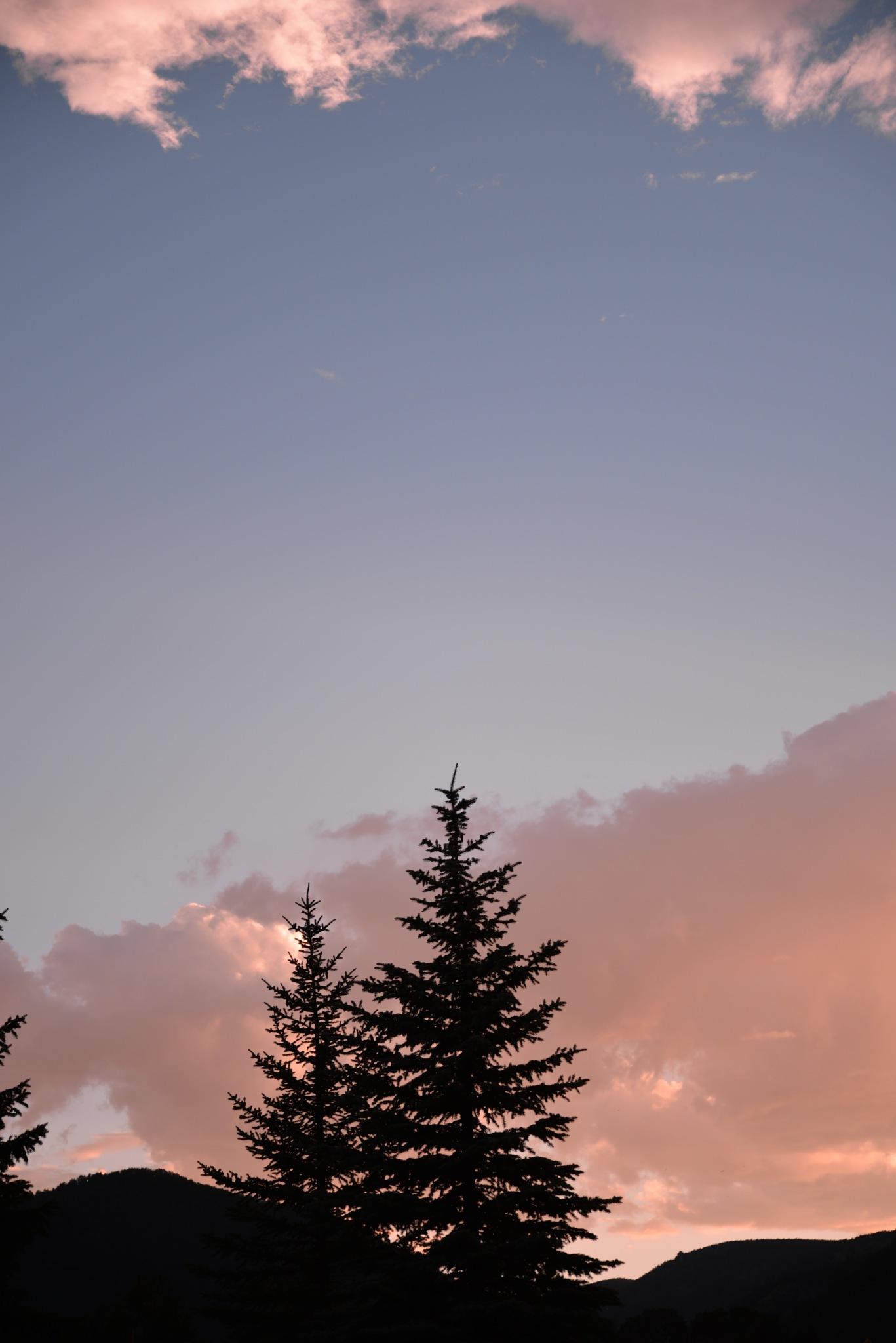 Skylight by Misty Martin