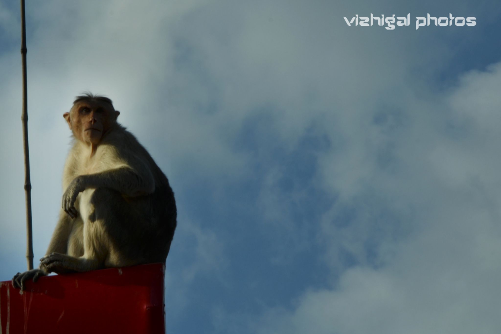 alone by Vizhigal Photos